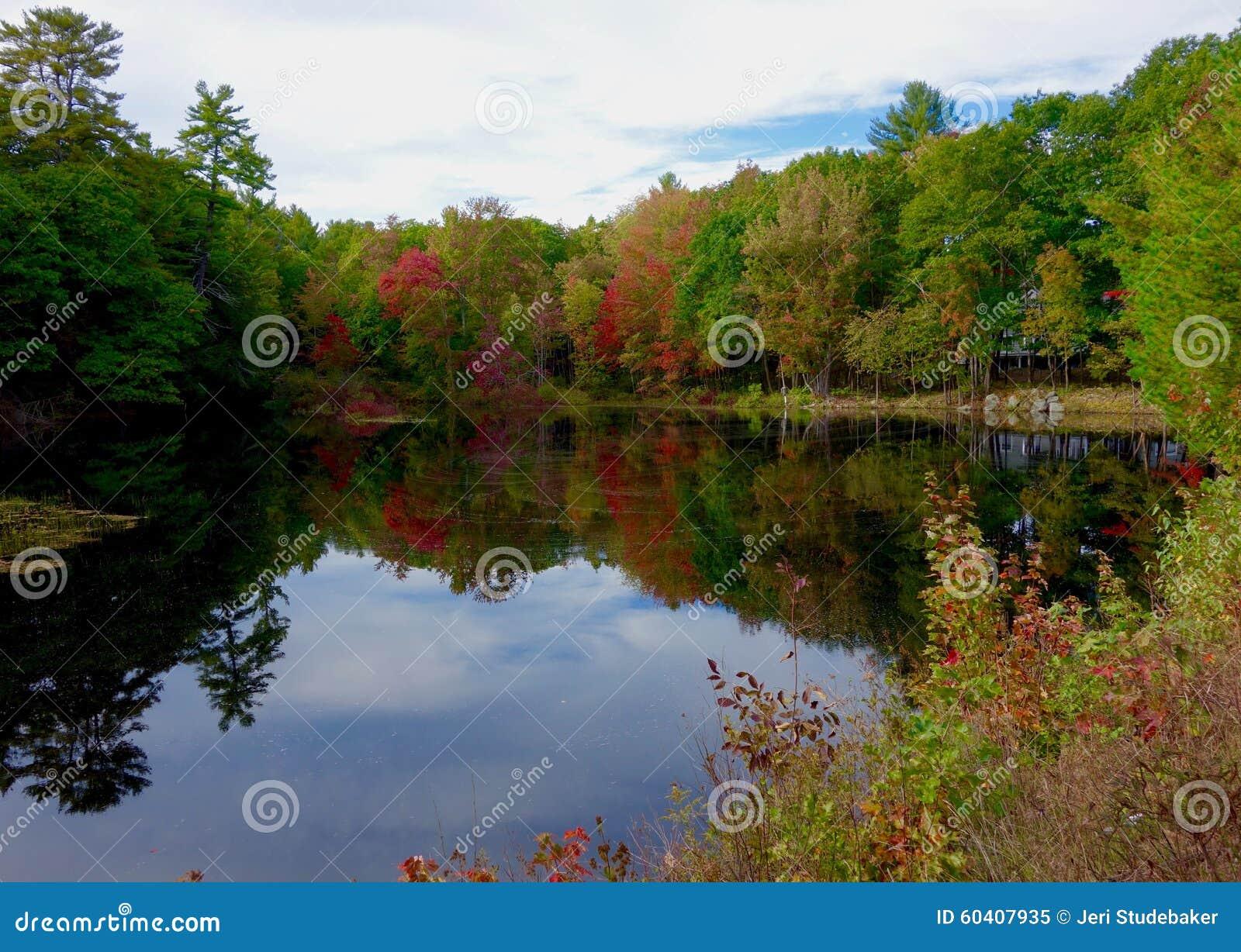 秋天在湖的秋天风景