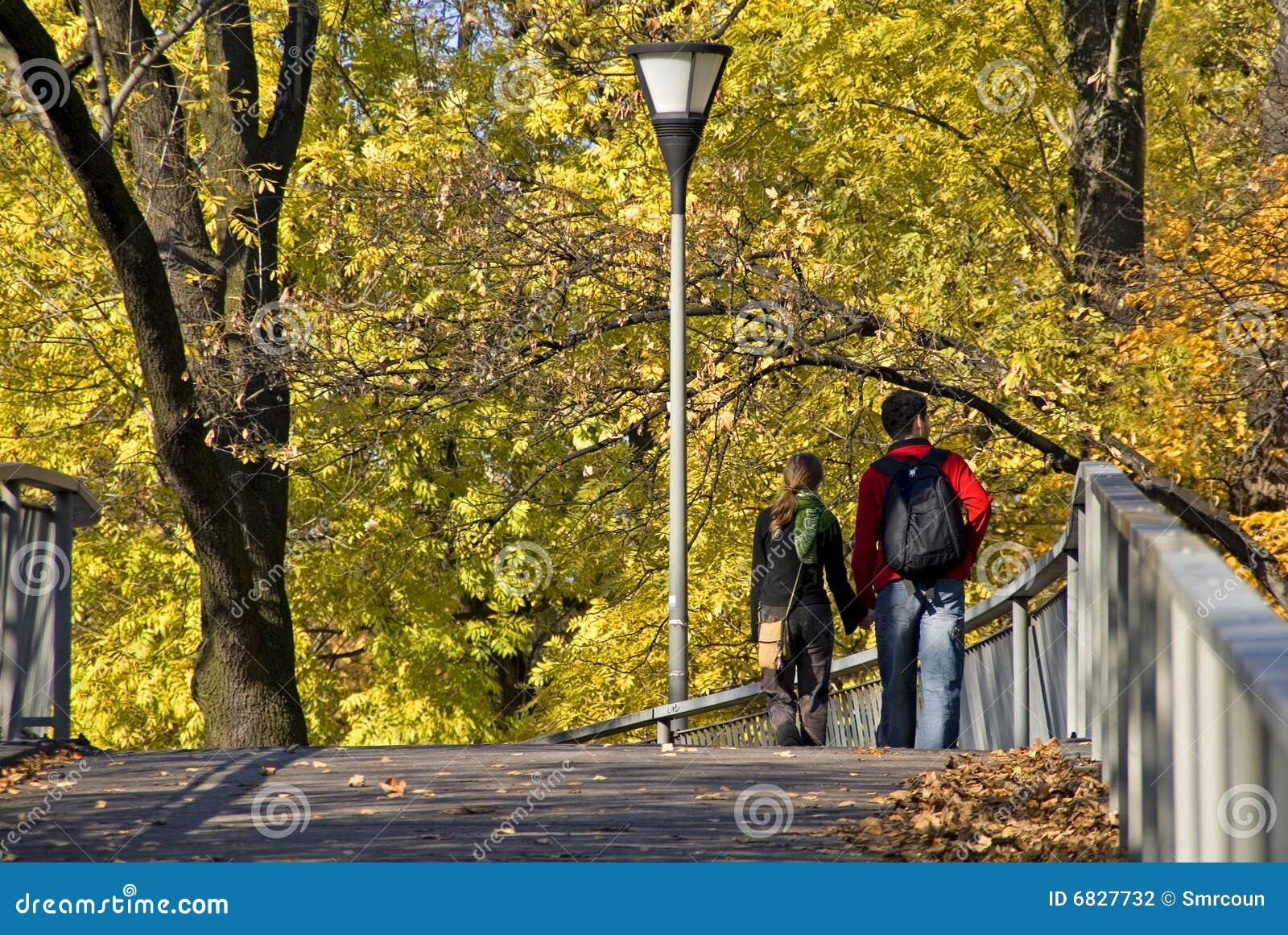 秋天城市公园结构