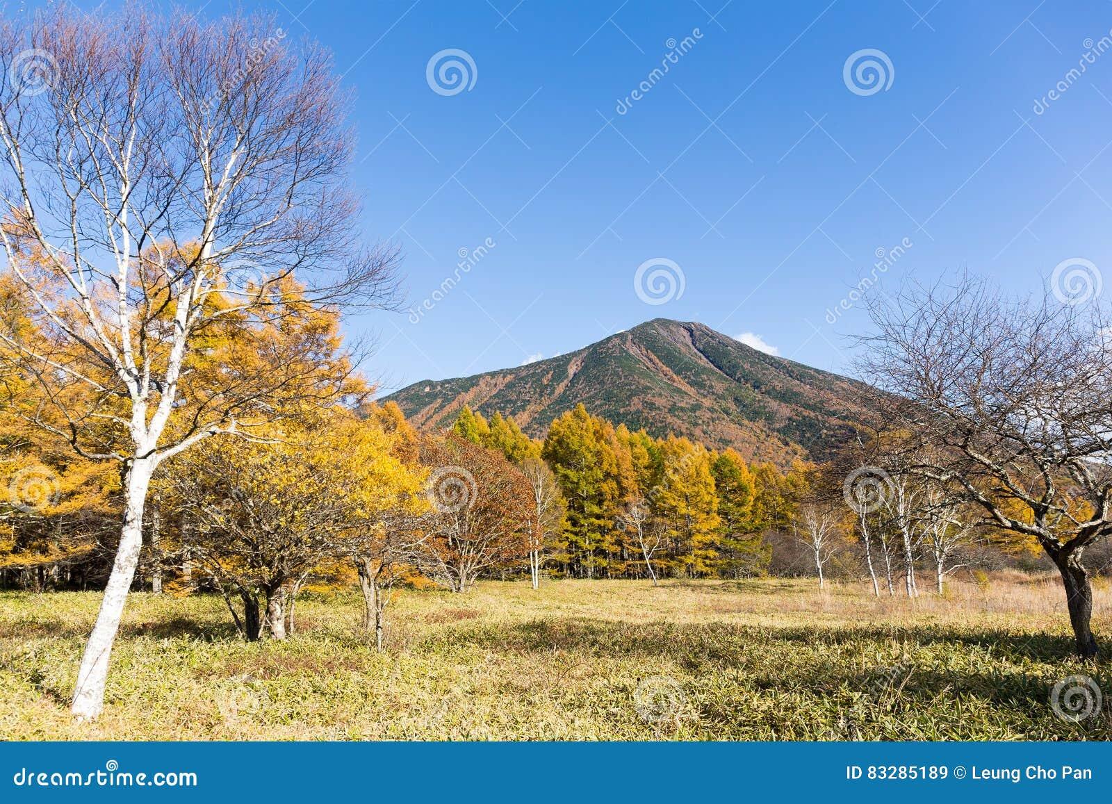 秋天季节的男体山
