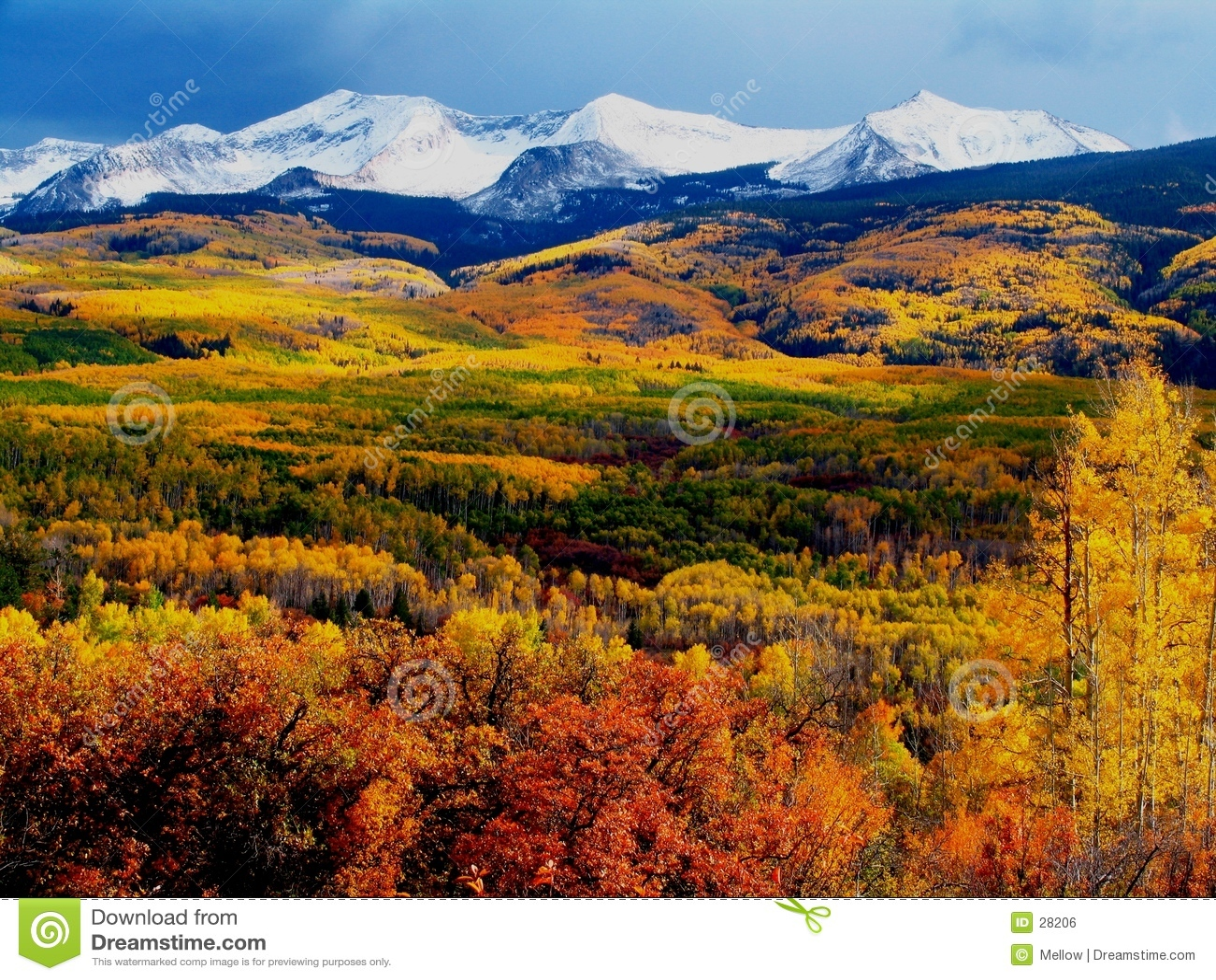 Download 秋天山 库存照片. 图片 包括有 橙色, 本质, beautifuler, 秋天, asper, 五颜六色, 展望期 - 28206