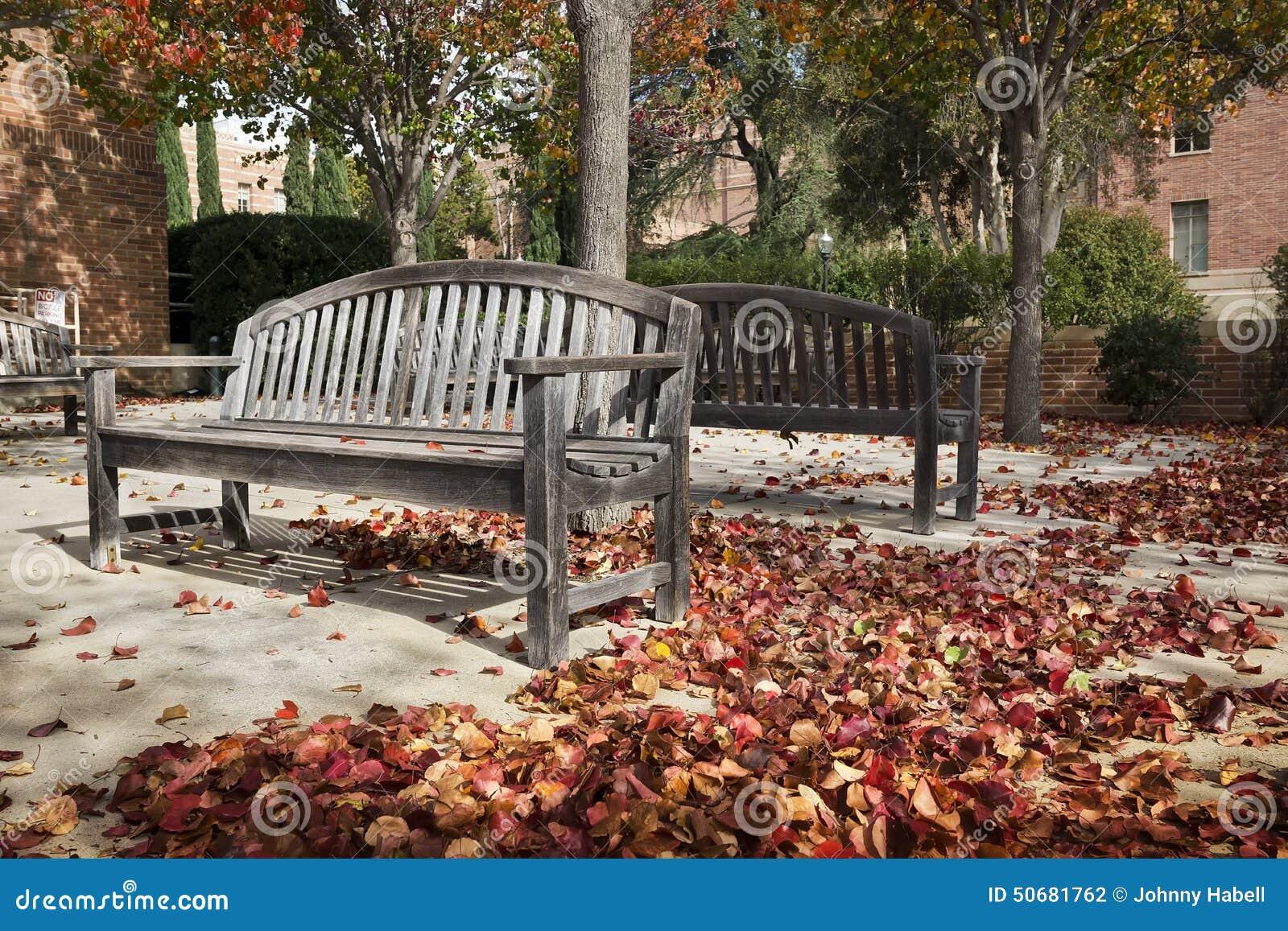 Download 秋天把木换下场 库存照片. 图片 包括有 沉寂, 休息, 上色, 露台, 城市, 工厂, 多个, 庭院, 场面 - 50681762