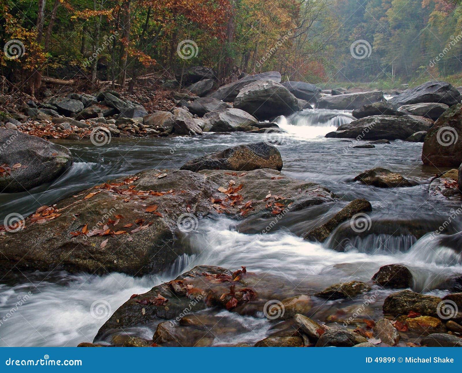 秋天有雾的河场面