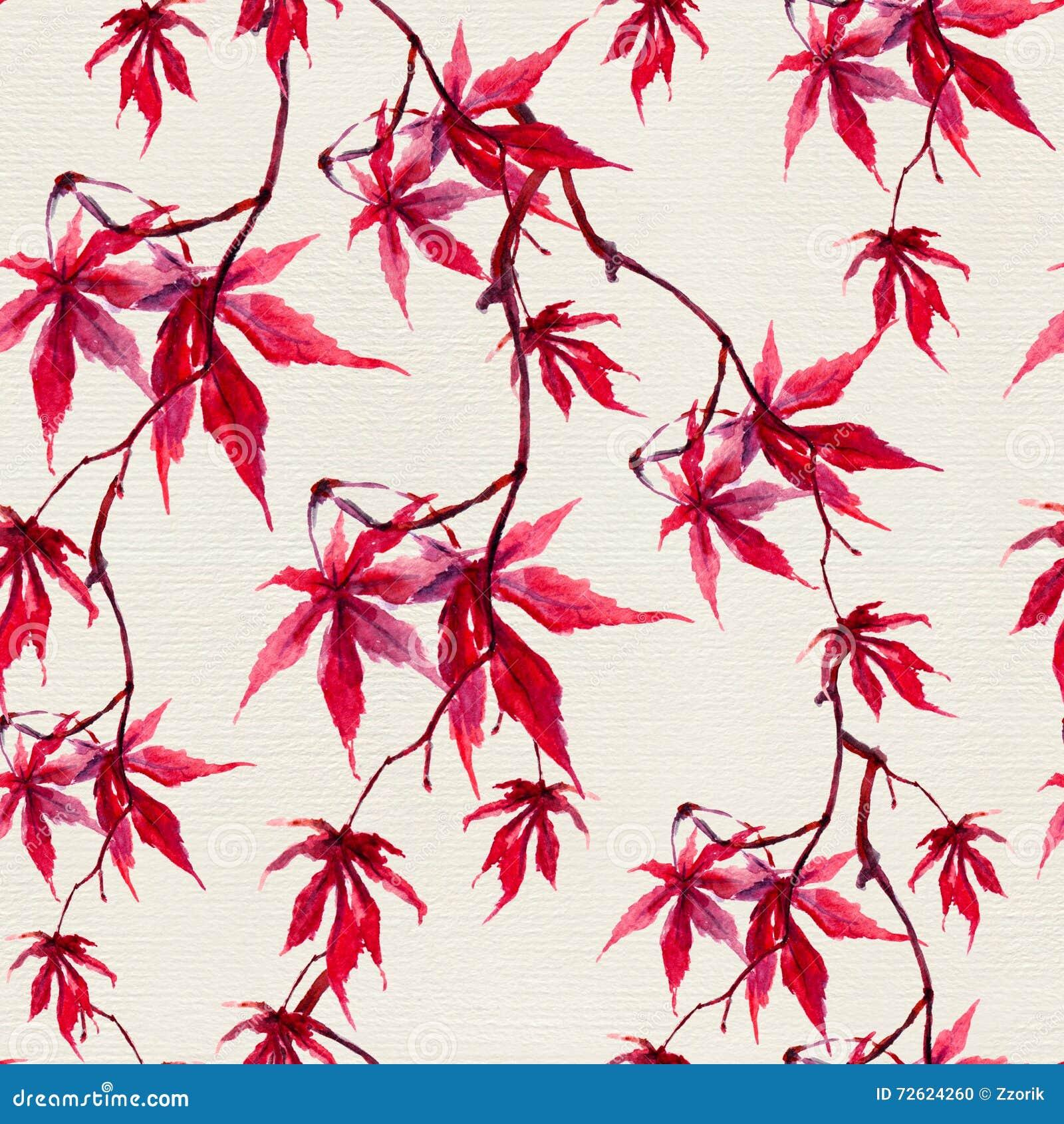 秋天朱红色的槭树叶子 无缝的模式 水彩