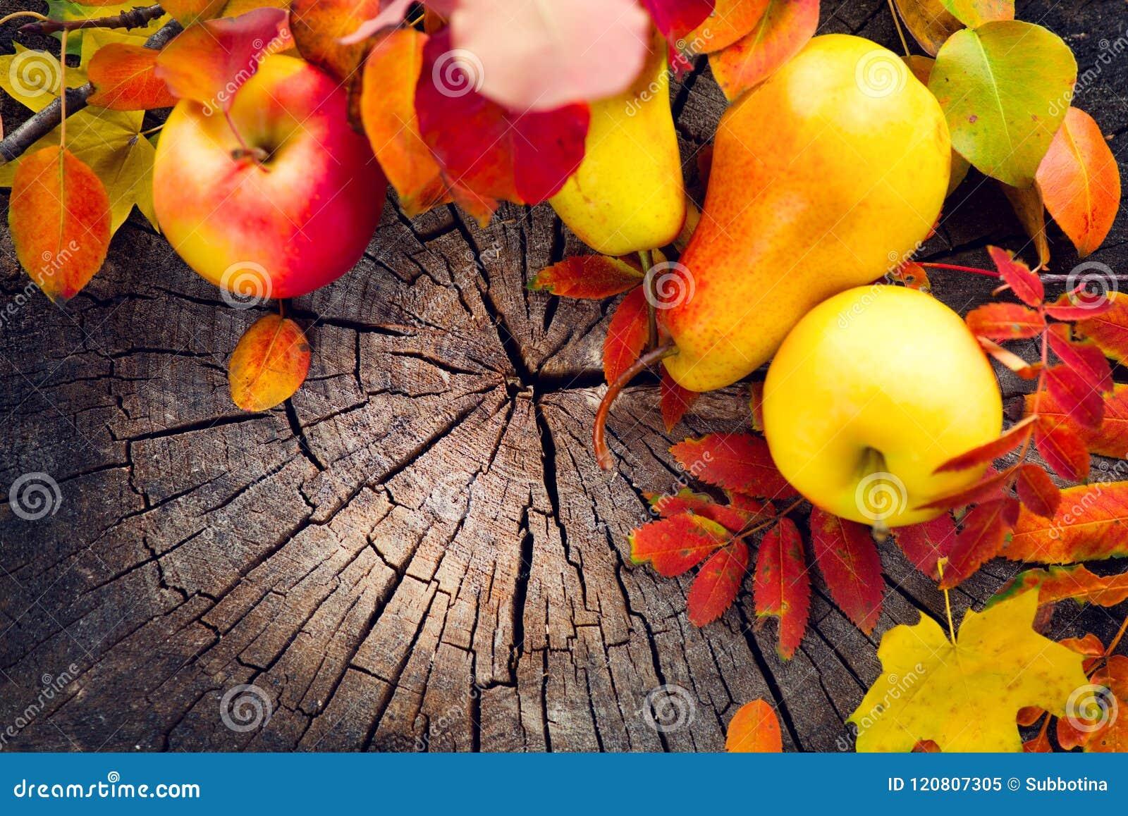 秋天果子和五颜六色的叶子在老破裂的木背景 秋天 感恩