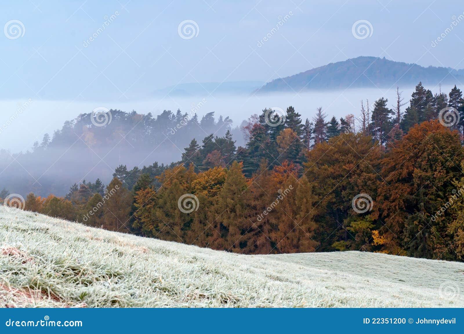 秋天树冰早晨