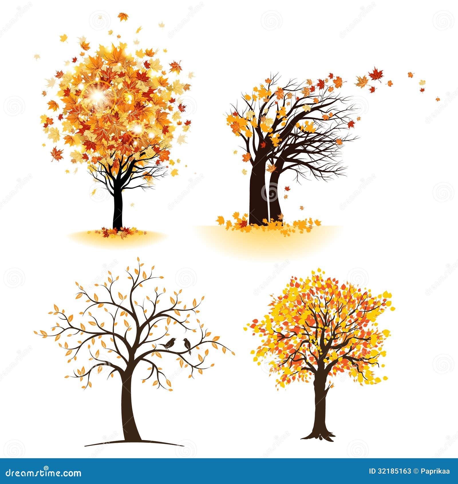 秋天与叶子的树集合.图片