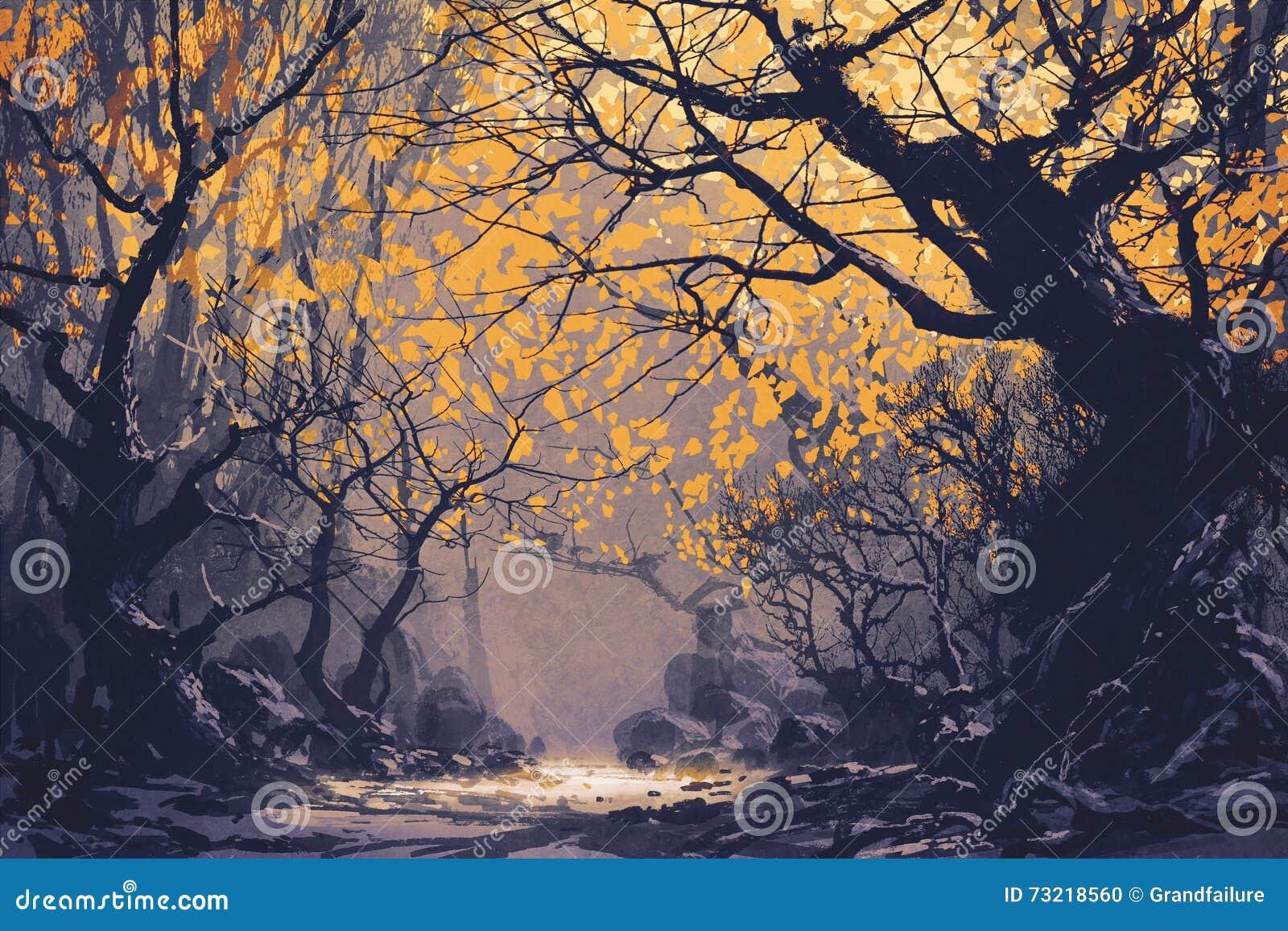 秋天森林夜场面