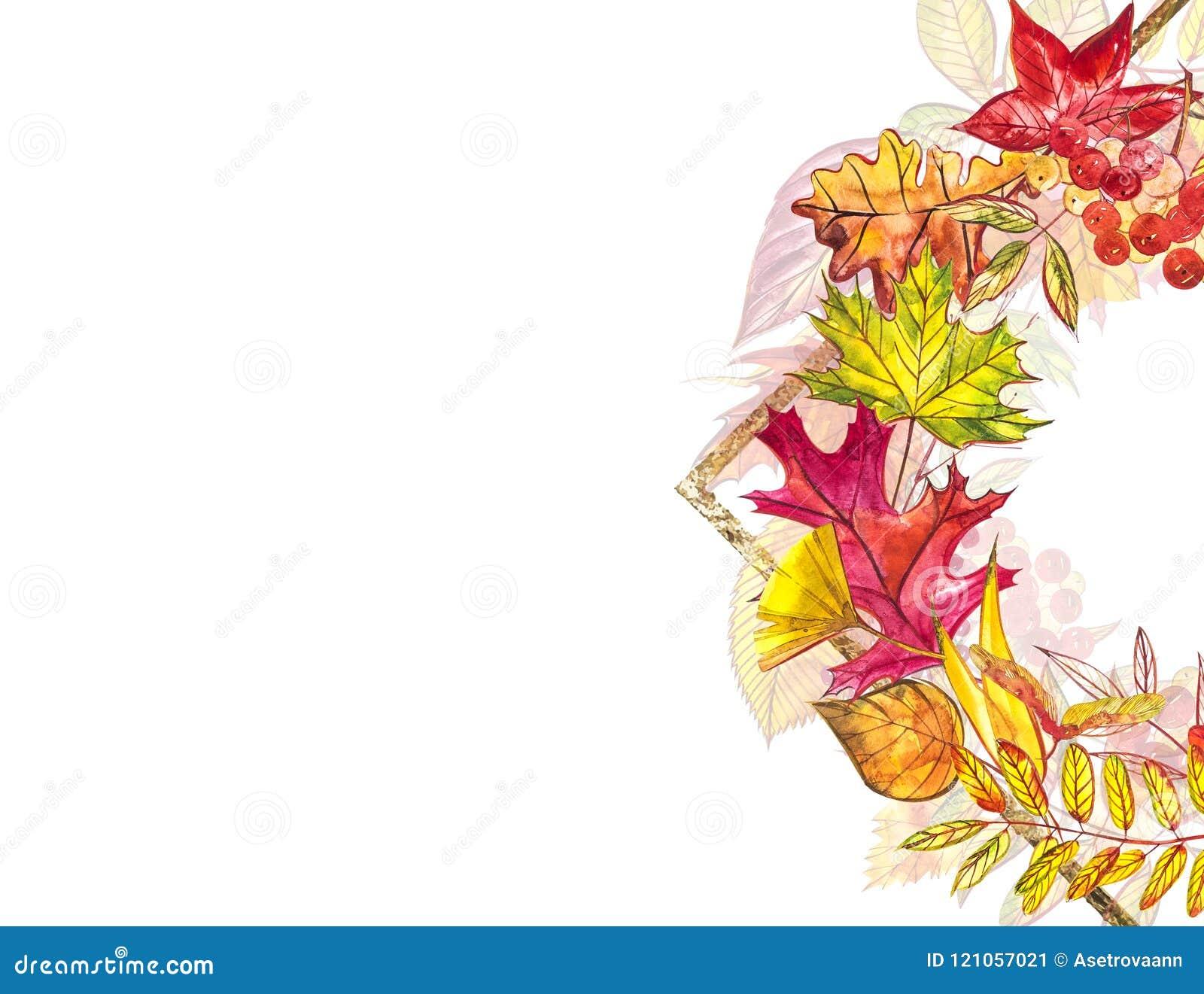 秋天模板背景 季节性例证 网横幅模板 额嘴装饰飞行例证图象其纸部分