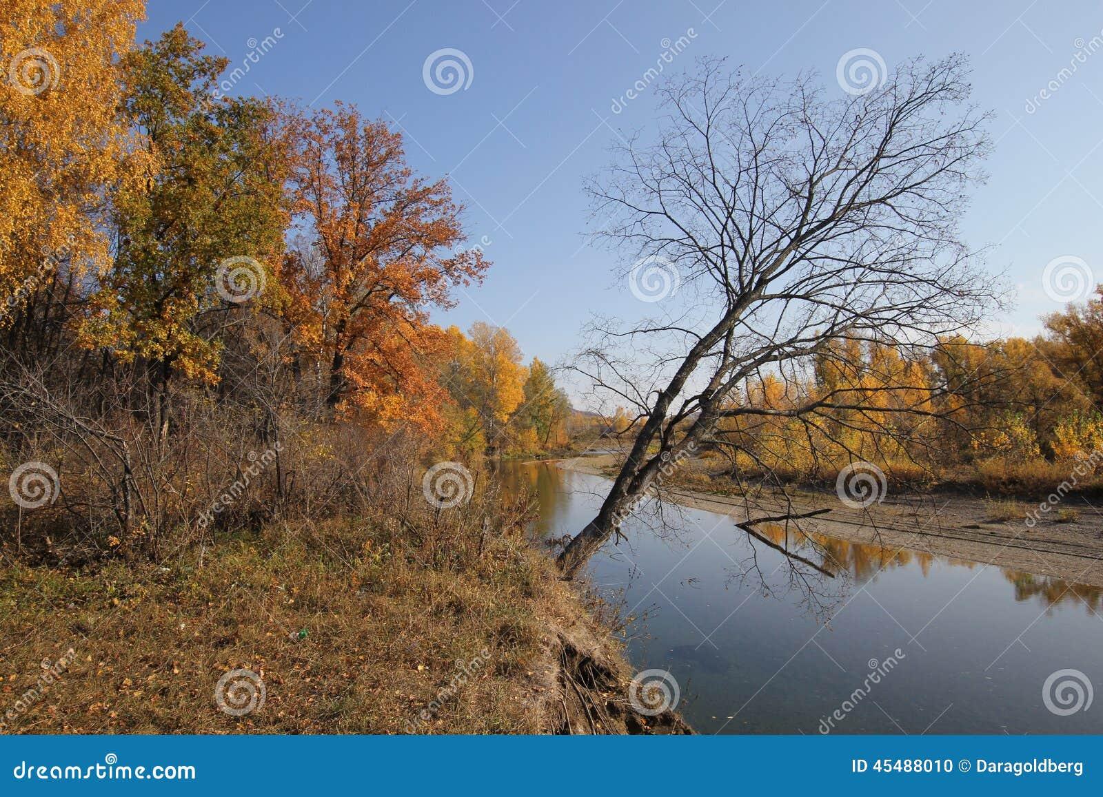 秋天美好的横向