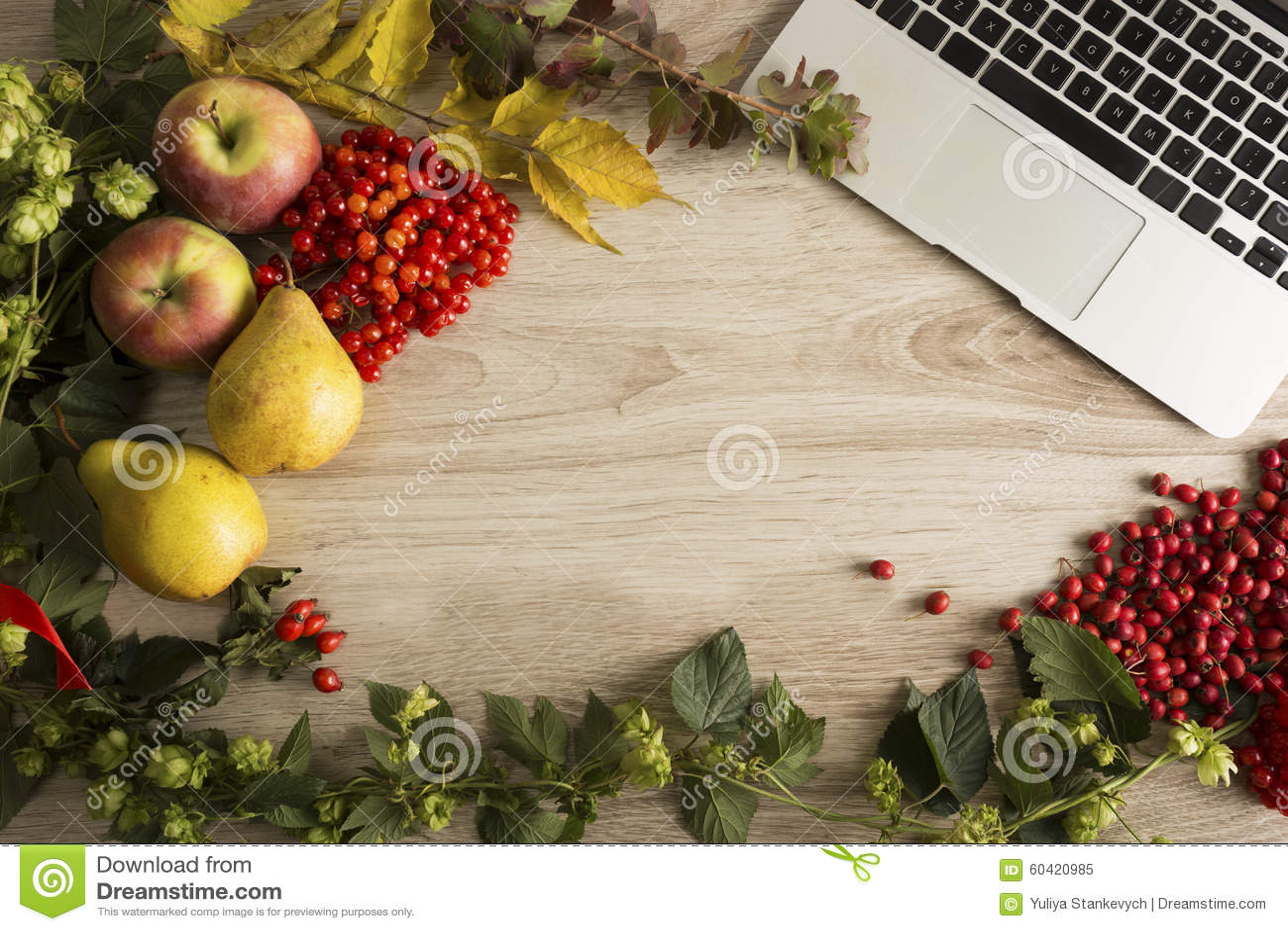 秋天背景特写镜头上色常春藤叶子橙红