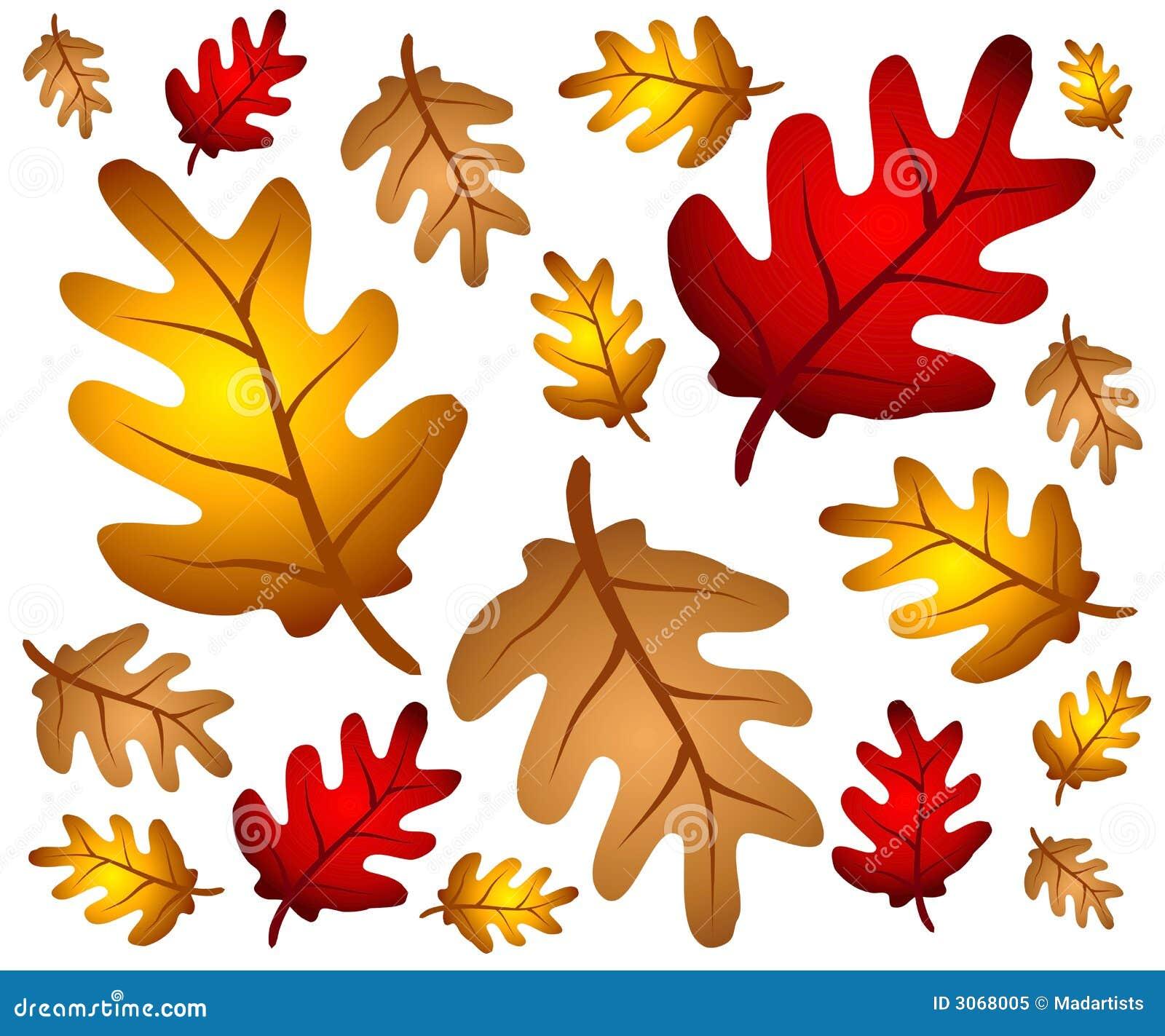 秋天背景离开橡木
