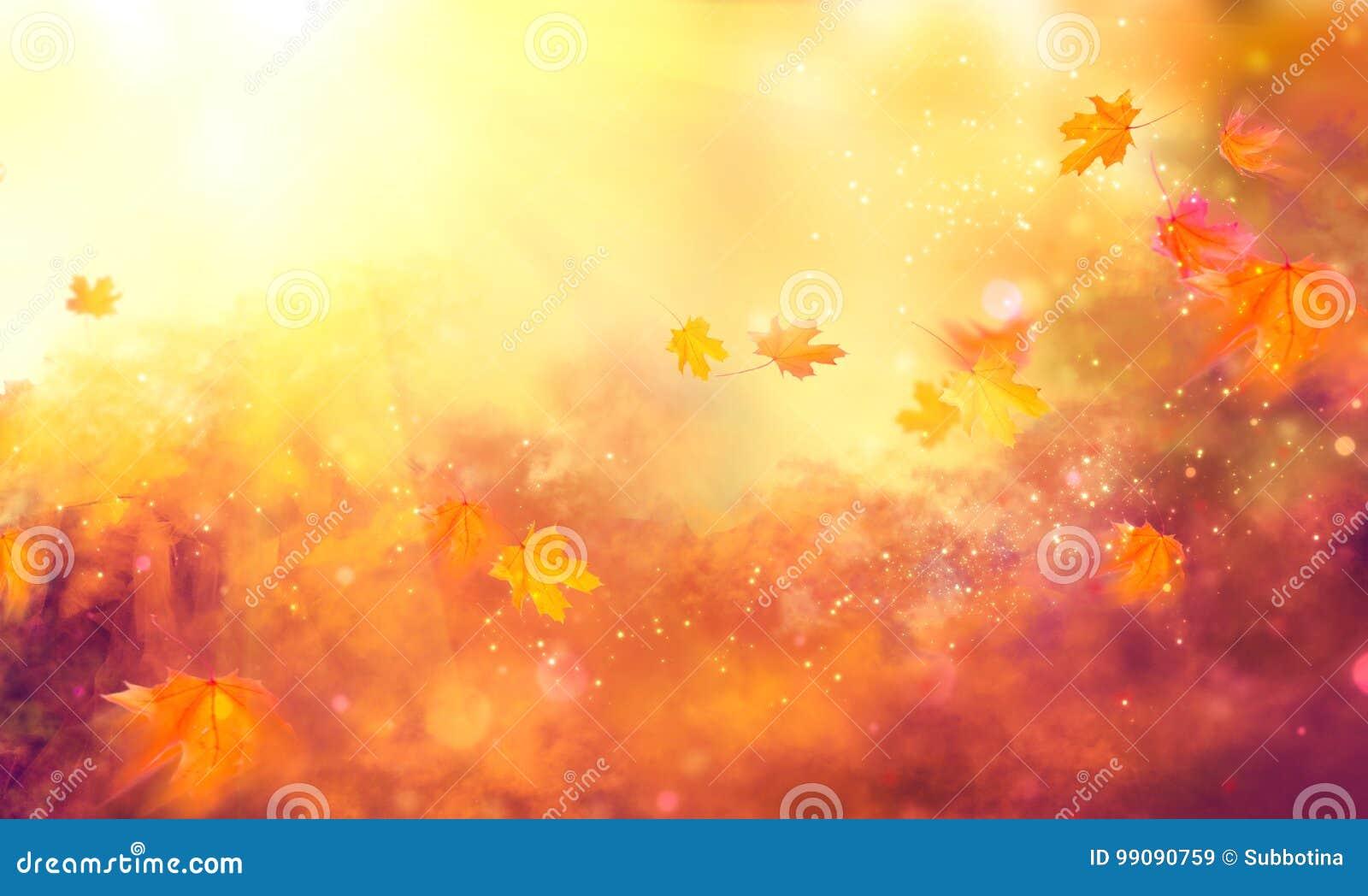 秋天背景 秋天五颜六色的叶子