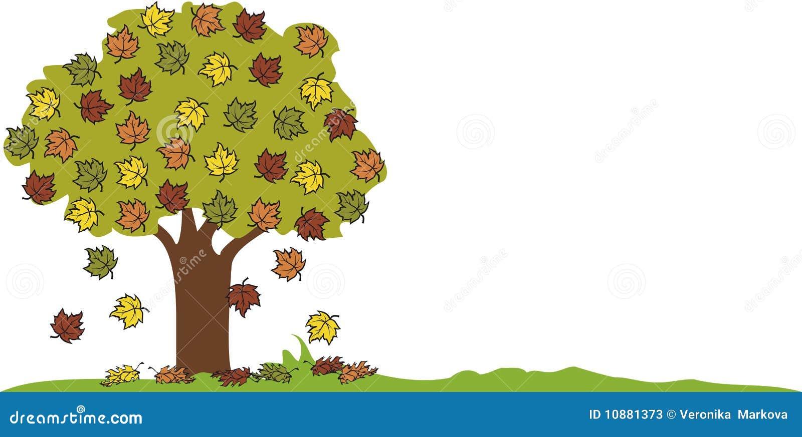 秋天落的叶子结构树
