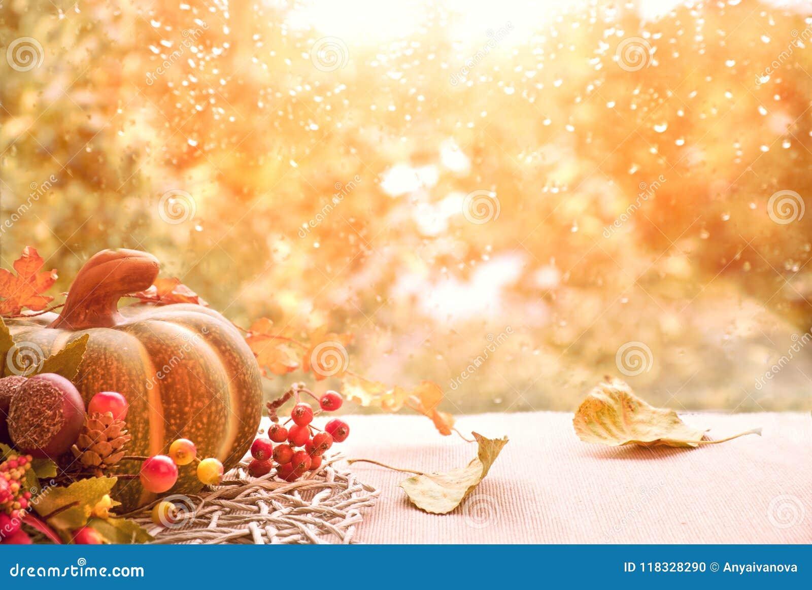 秋天静物画用南瓜和烘干在窗台板的叶子