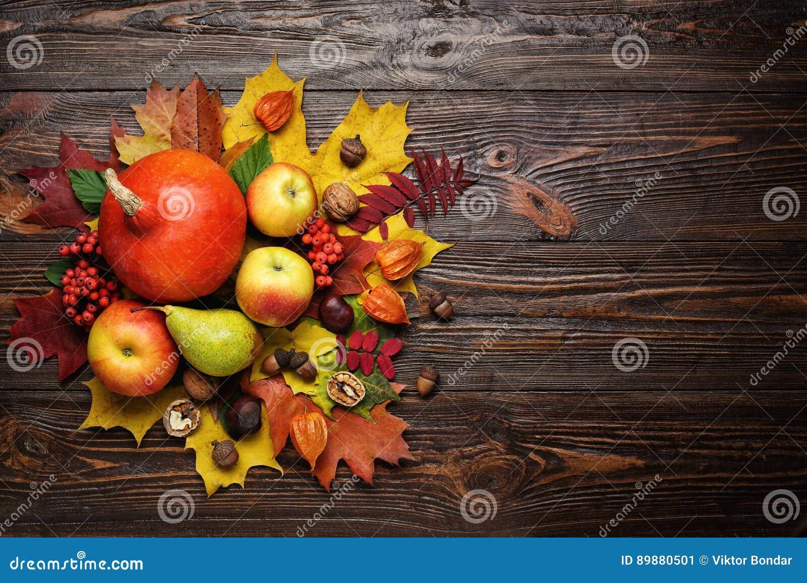 秋天静物画、被收获的南瓜与秋天叶子和autum