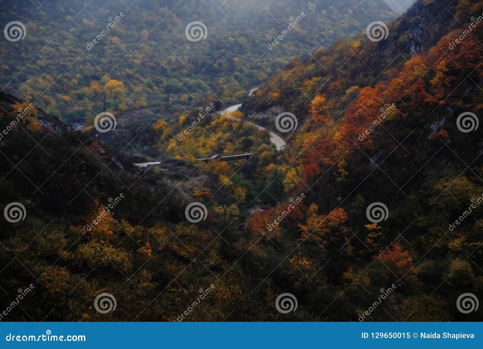 秋天颜色和小河与金属桥梁