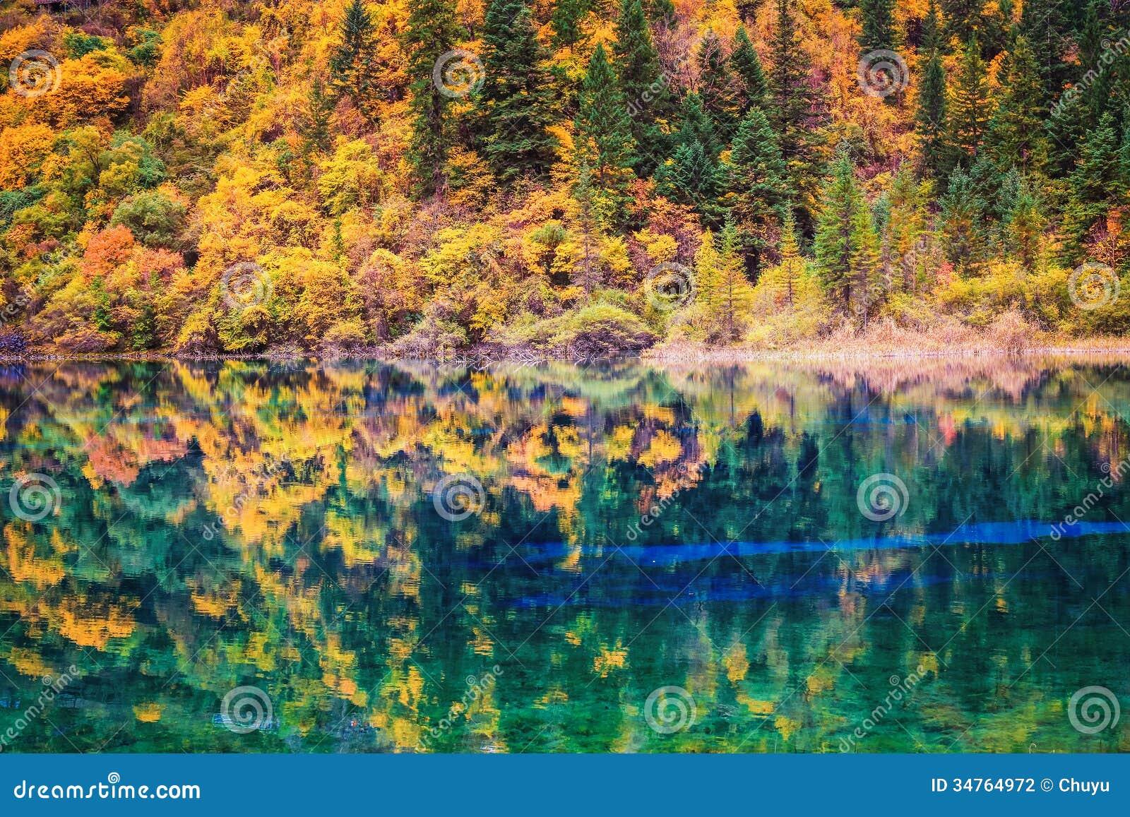 秋天颜色在湖边平地