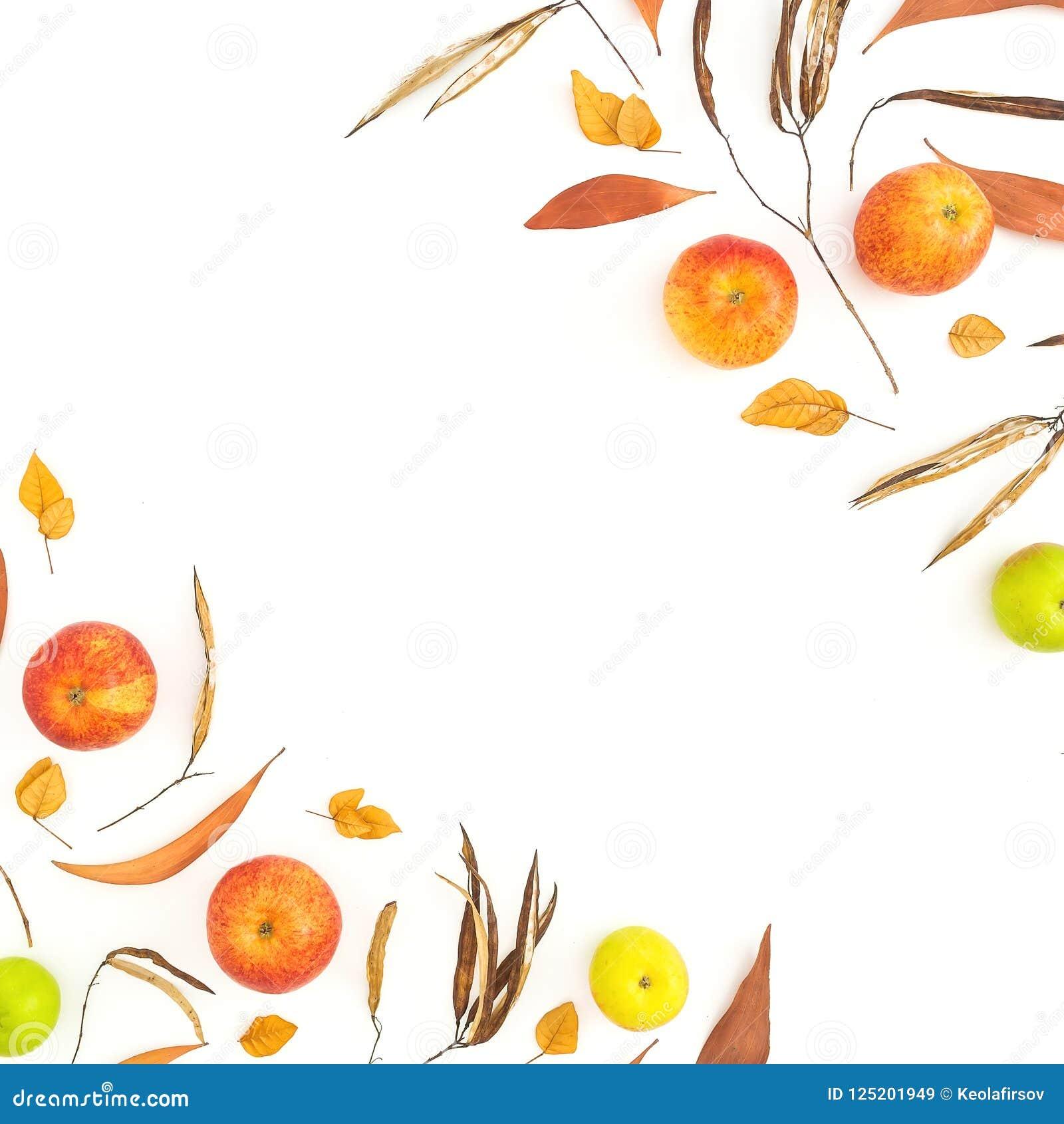 秋天黄色和红色苹果秋天框架在白色背景结果实 平的位置,顶视图 感恩日