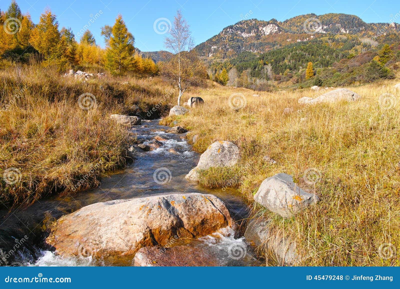 秋季山风景