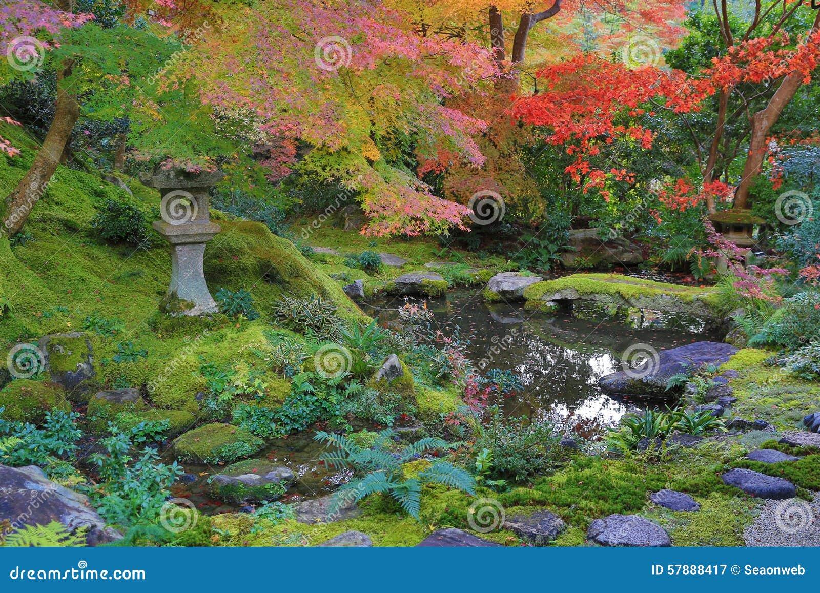 秋季的禅宗庭院在Rurikoin的日本