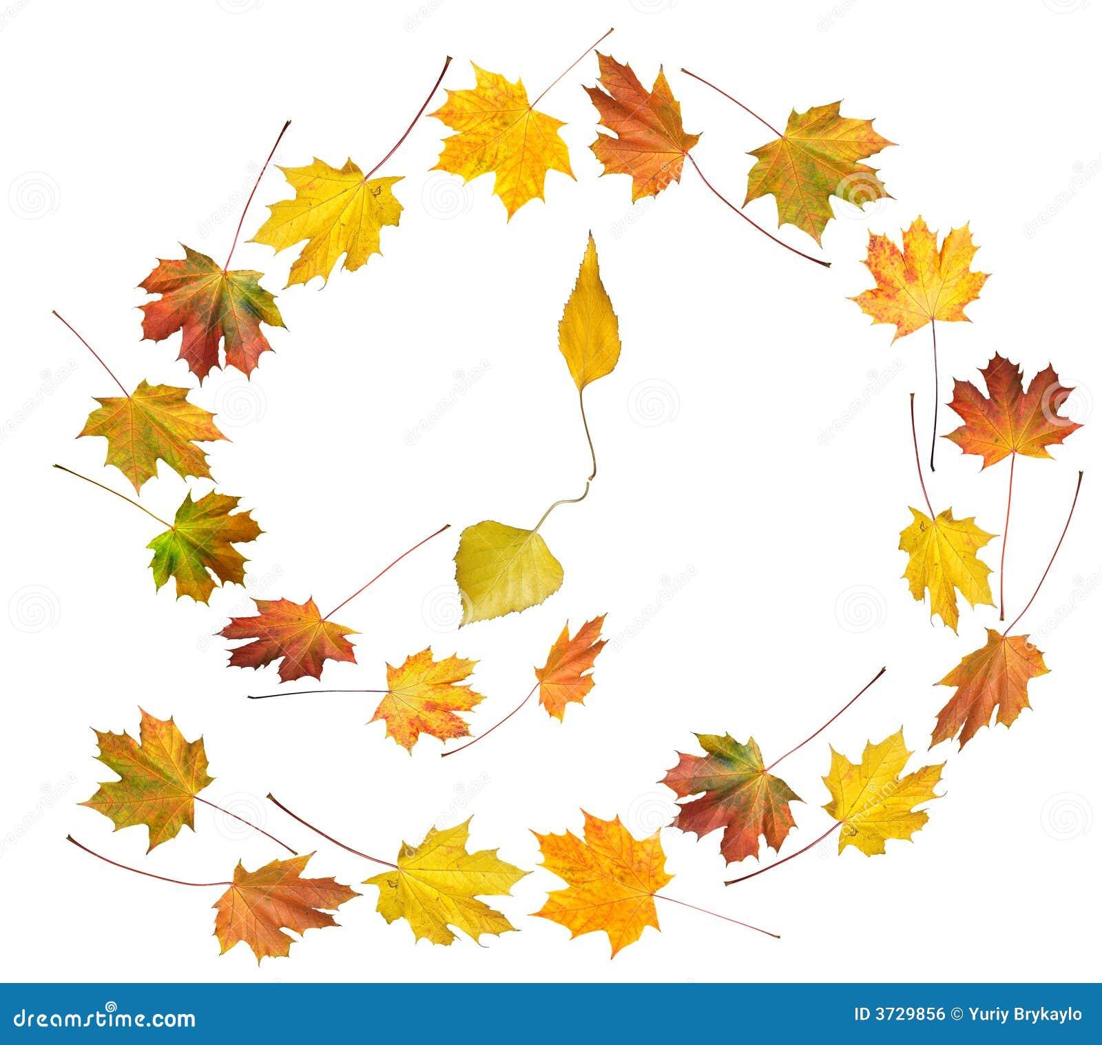 秋季舞蹈时间图片