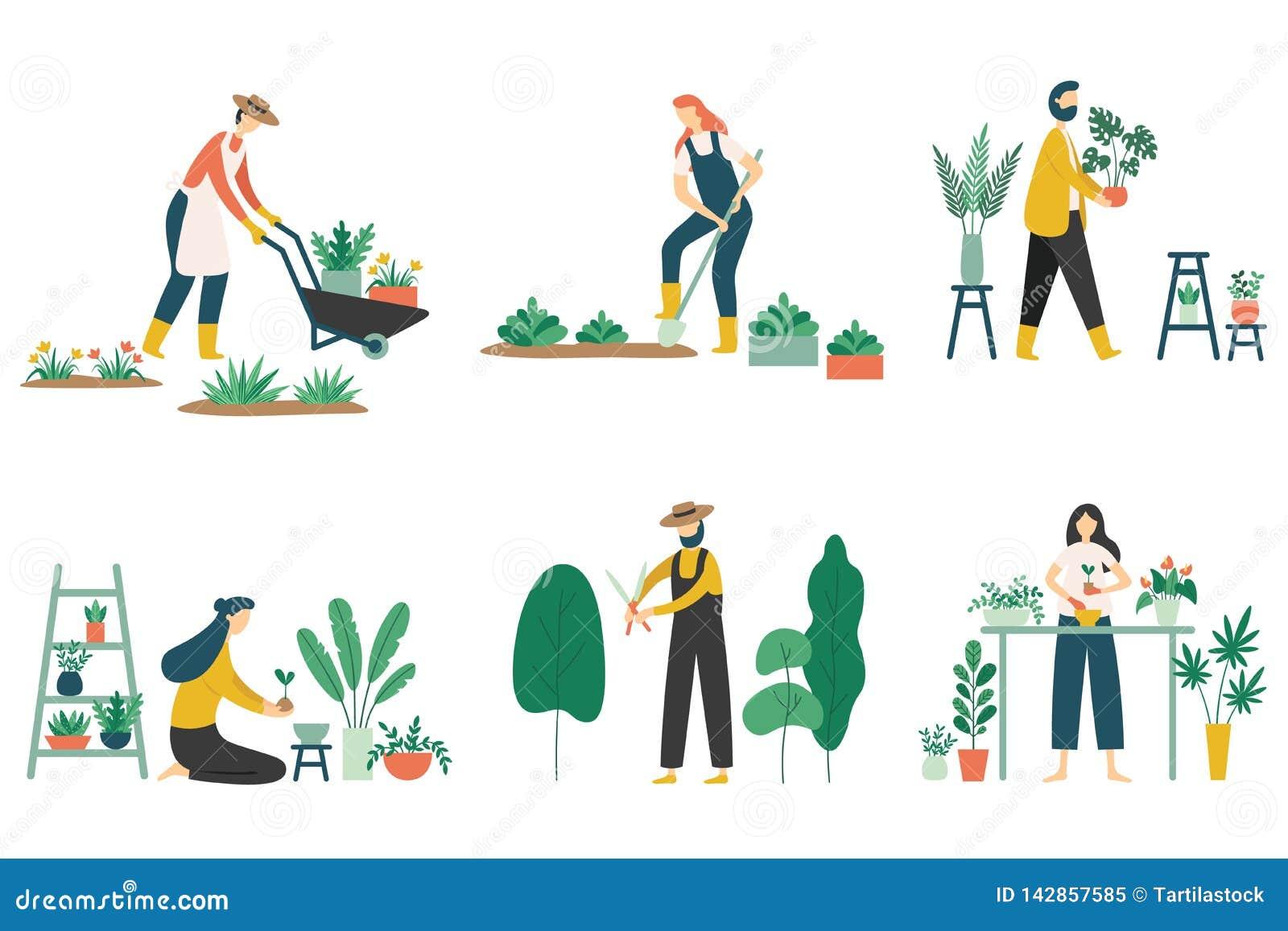 人从事园艺 种植庭院花、农业花匠爱好和庭院工作平的传染媒介例证集合的妇女