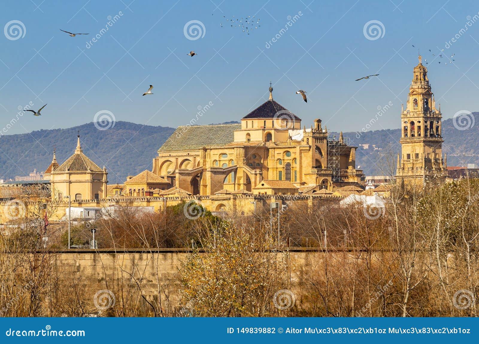 科多巴市老梅斯基塔大教堂在瓜达尔基维尔河河上的在安大路西亚,西班牙