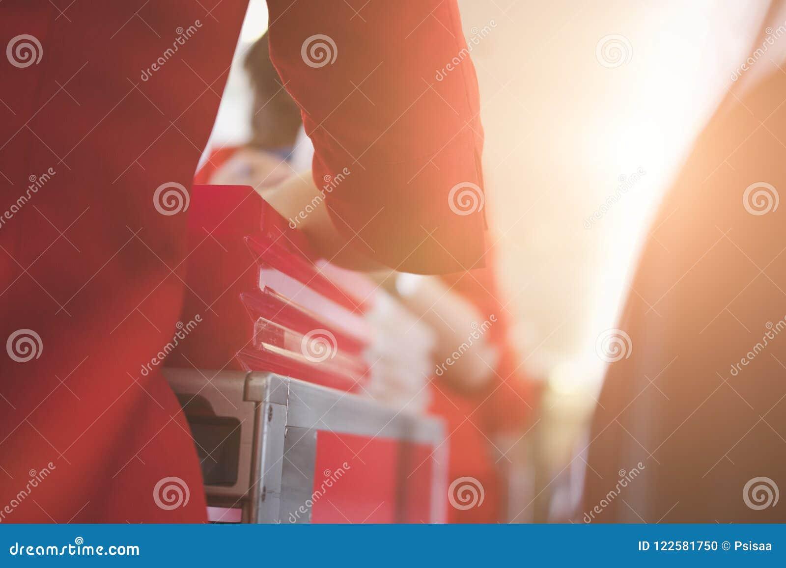 空服员对乘客的服务食物航空器的 stewarde