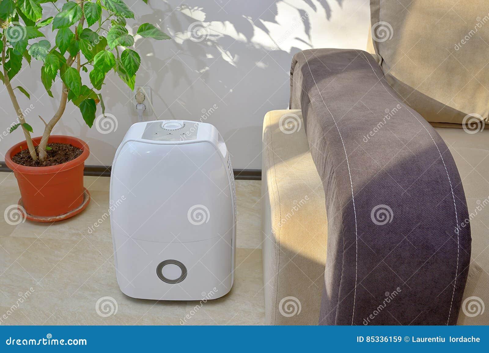 从空气的便携式的抽湿机colect水