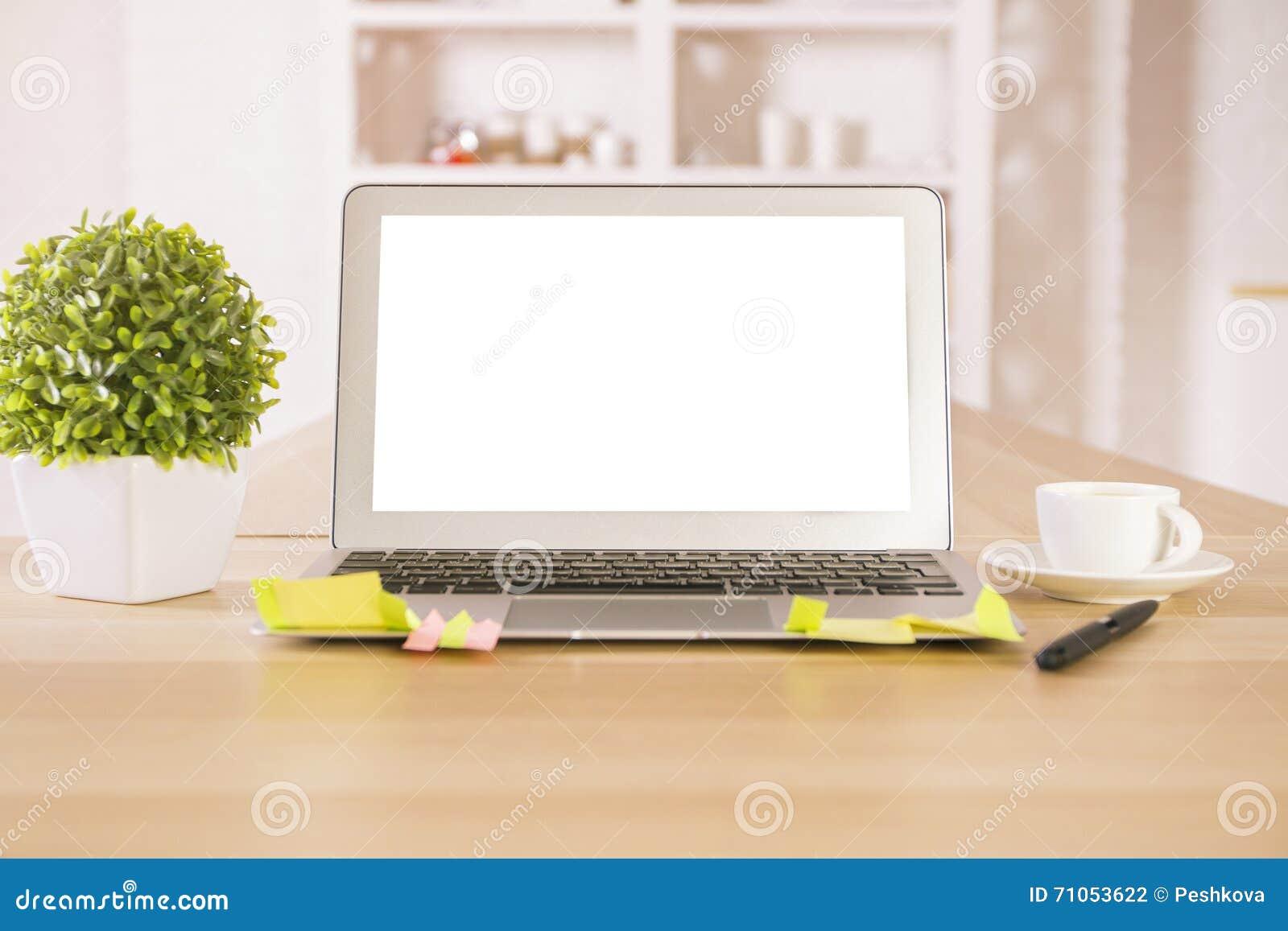 空的膝上型计算机和植物