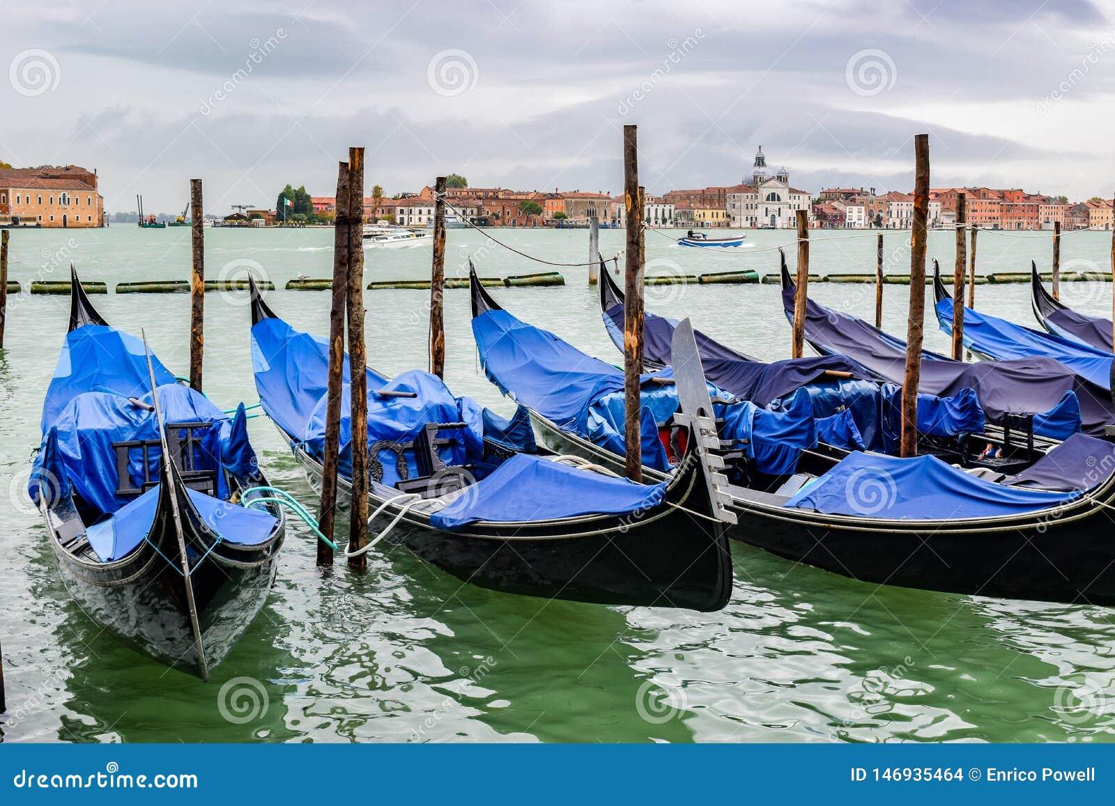 空的长平底船靠码头在在多雨11月季节的篷布盖的木停泊的杆之间在威尼斯,意大利