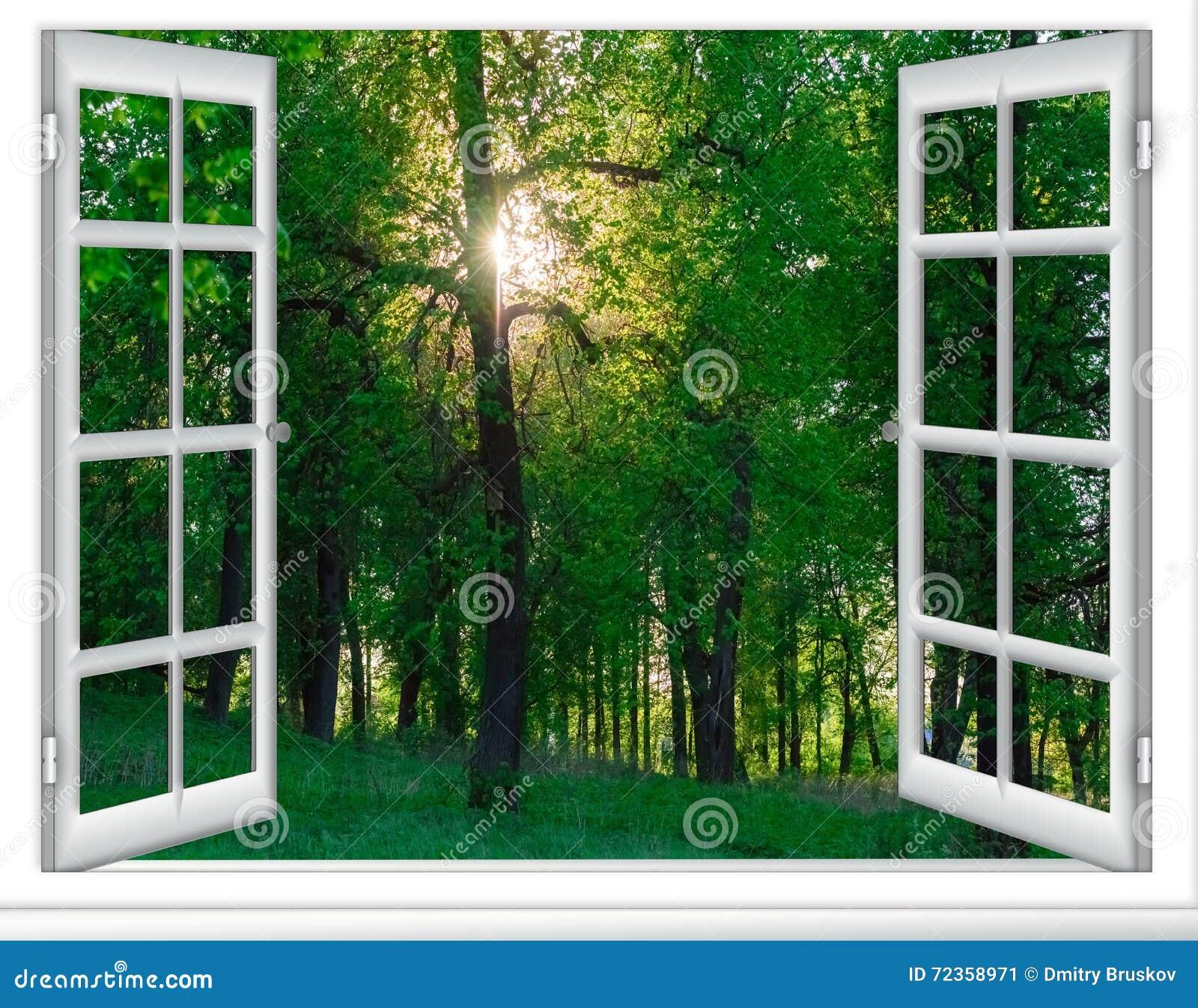从窗口的日出视图