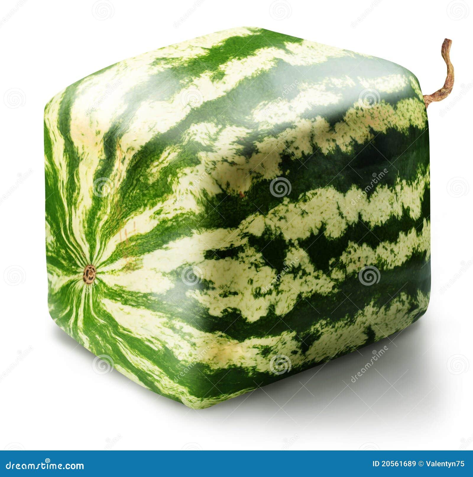 立方体西瓜