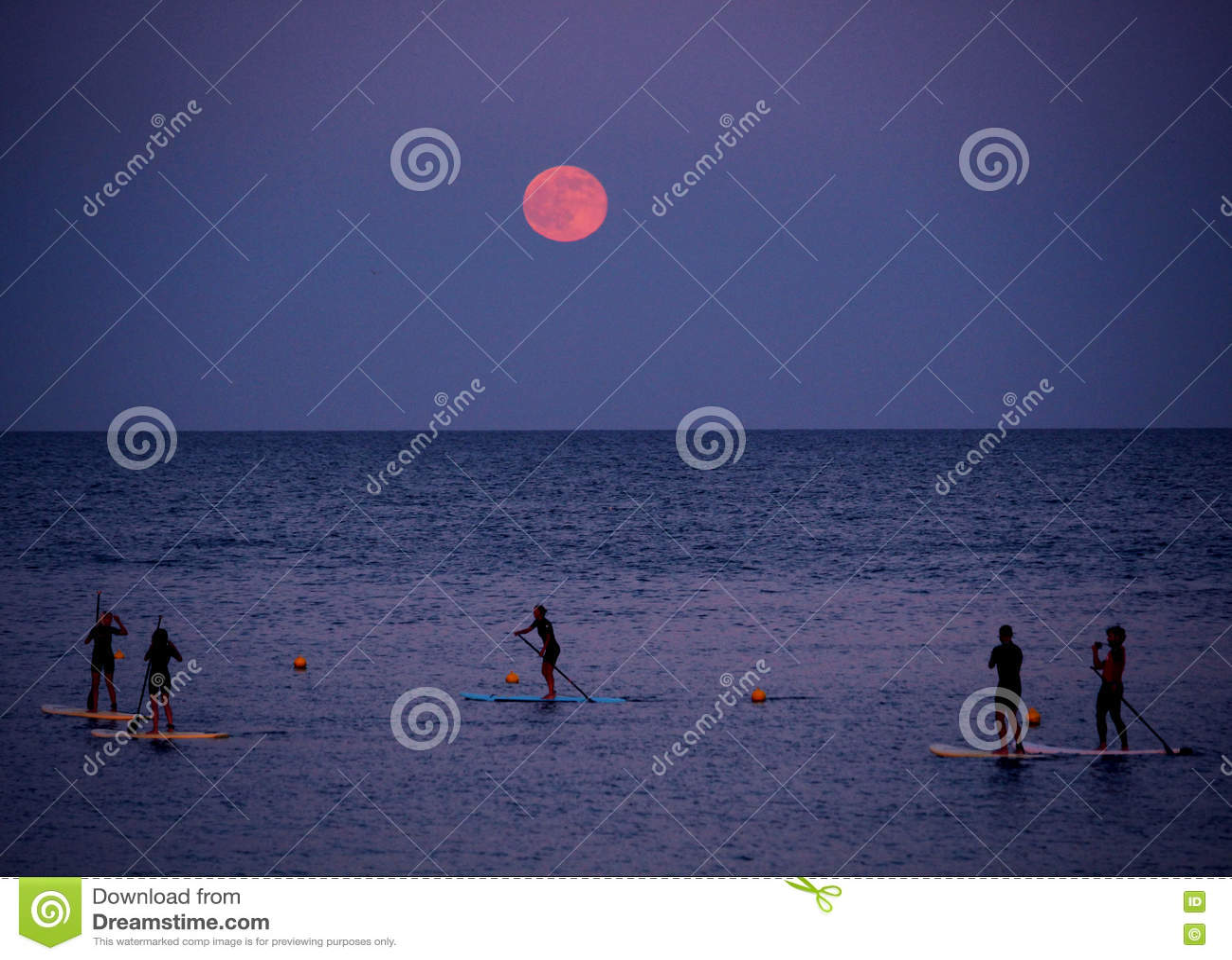 直立paddleboarding在满月下