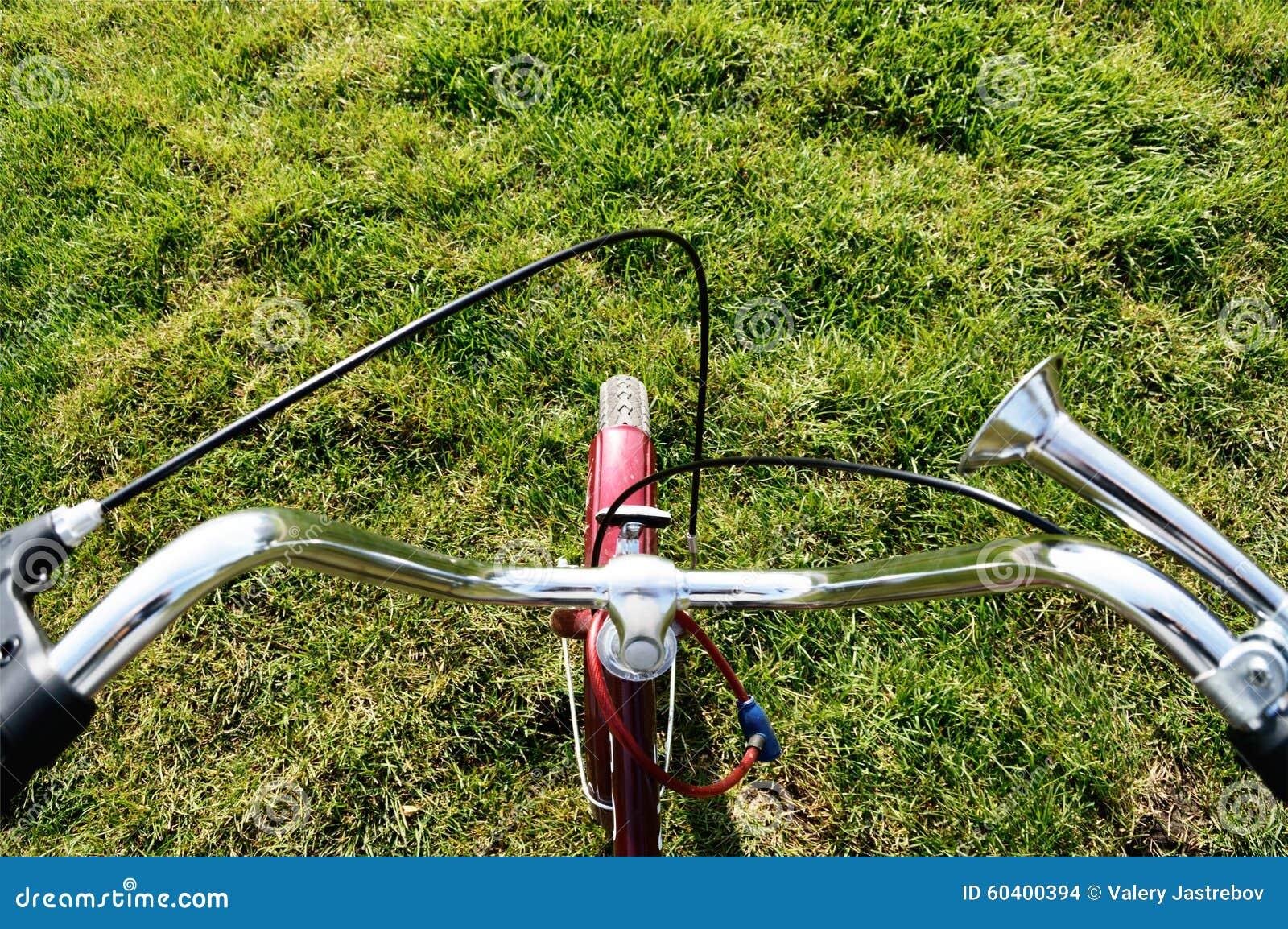 站立在绿草的自行车