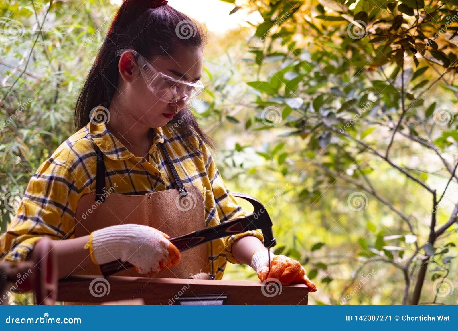站立建造者的妇女佩带锤击在木的工地工作的被检查的衬衣工作者钉子