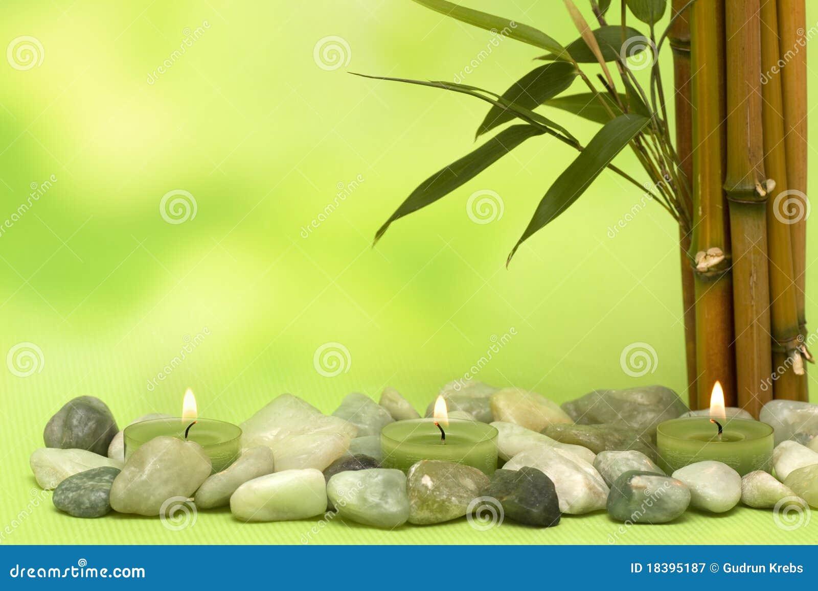 竹子对光检查成为原动力的健康