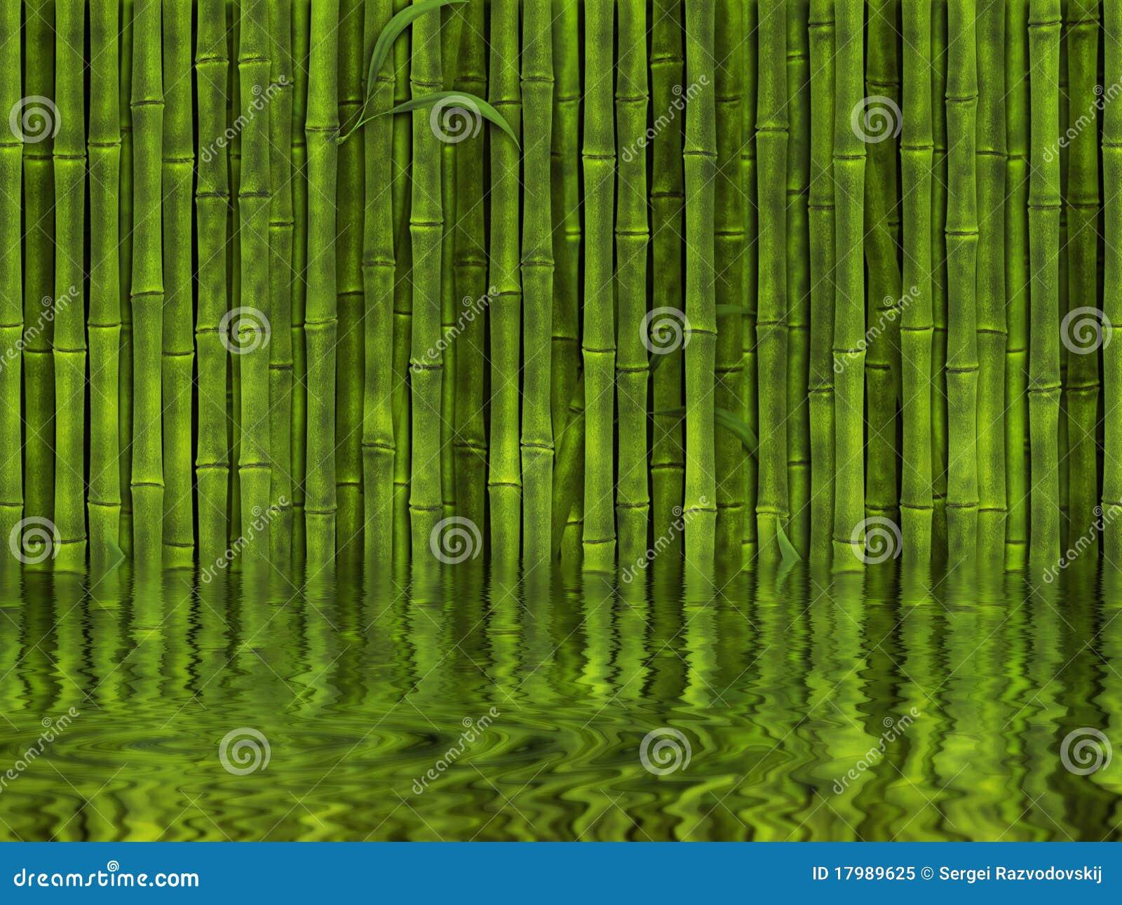 背景竹深绿色水.