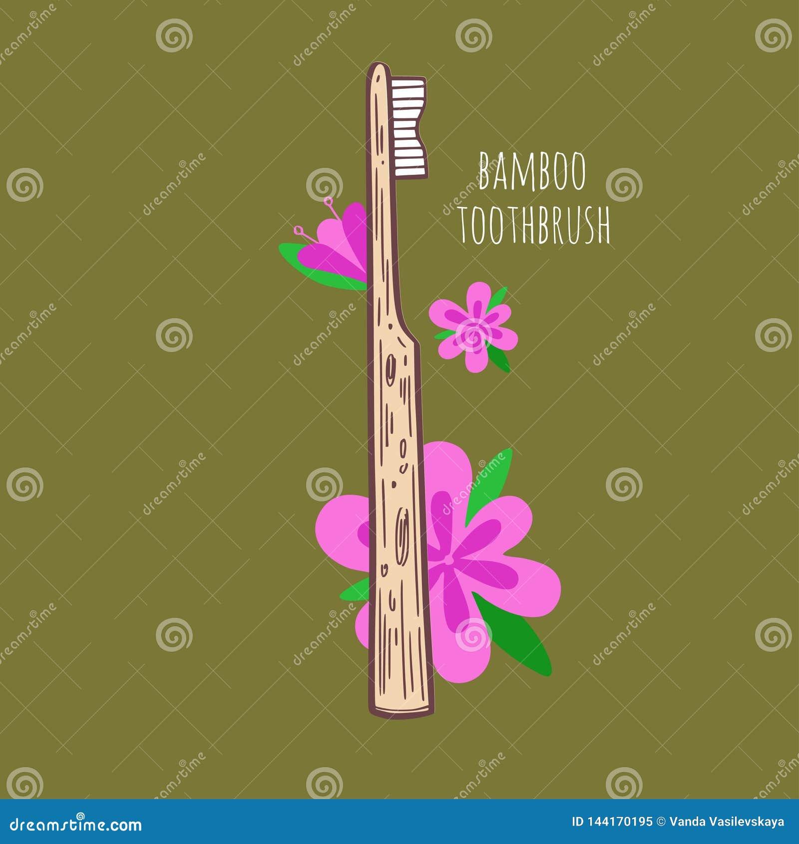 竹环境友好的teethbrush 向量手拉的例证 零的废物