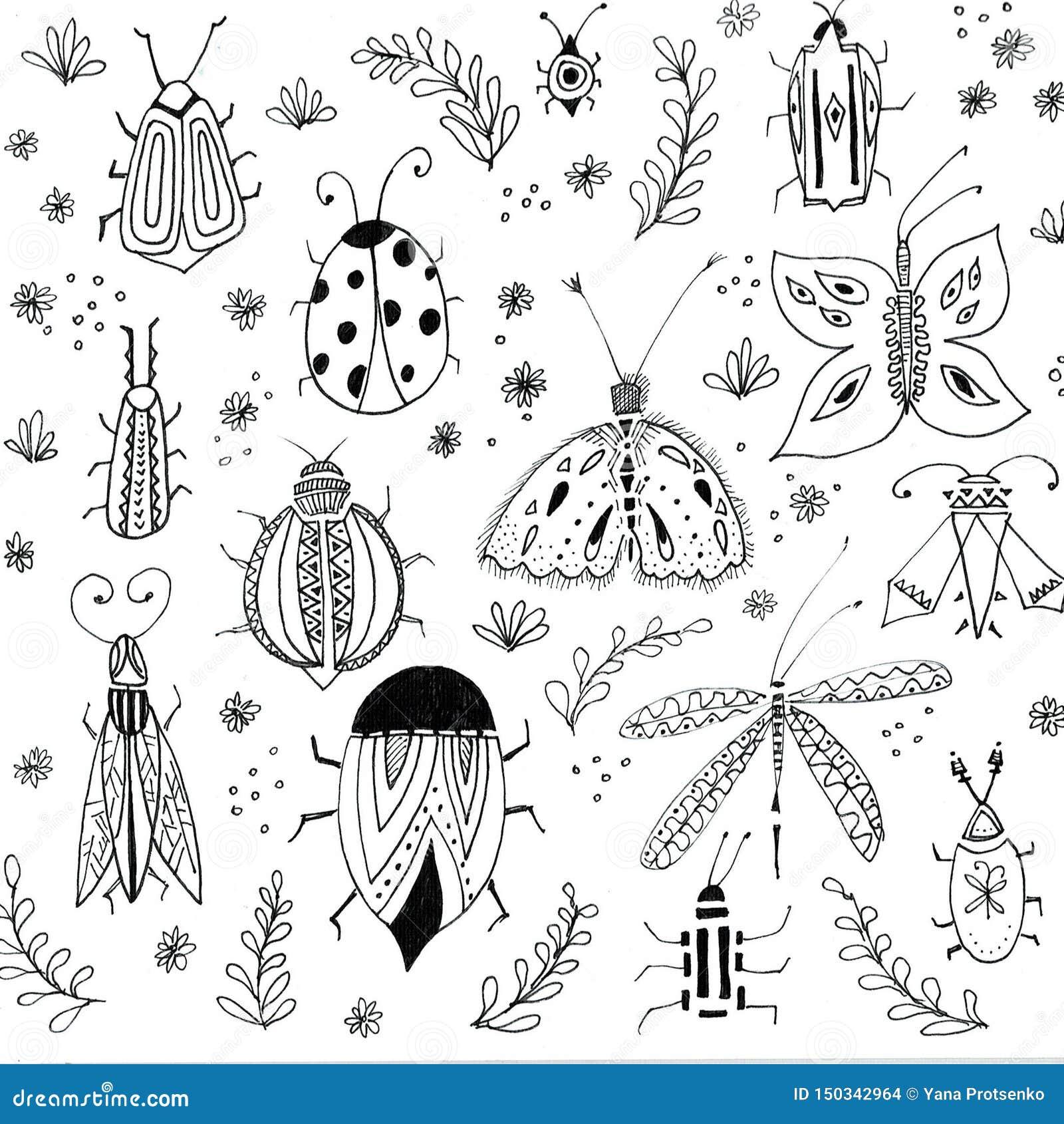 第一春天花背景 花卉元素,昆虫图画 手拉的植物的例证 庭院和