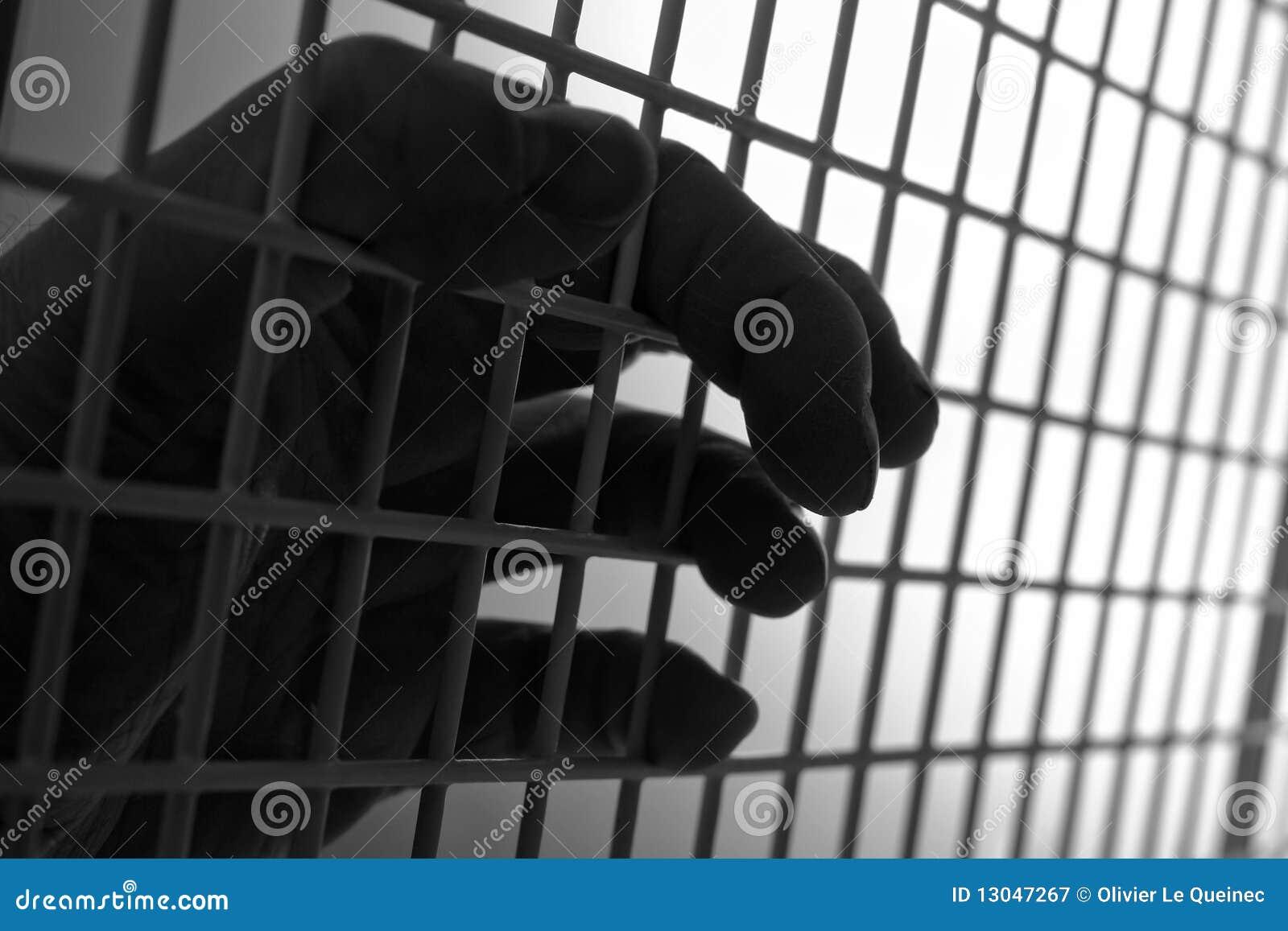 笼子获取的现有量人滤网钢绳