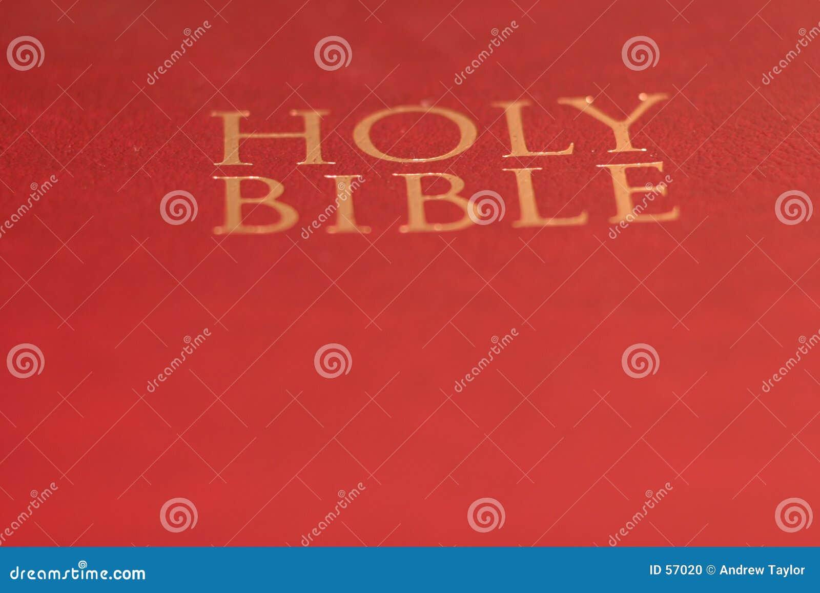 简单的圣经