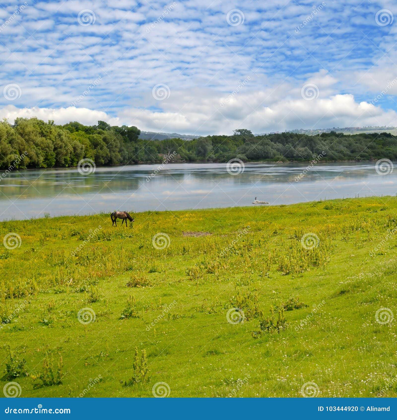 简单的河、草甸和天空
