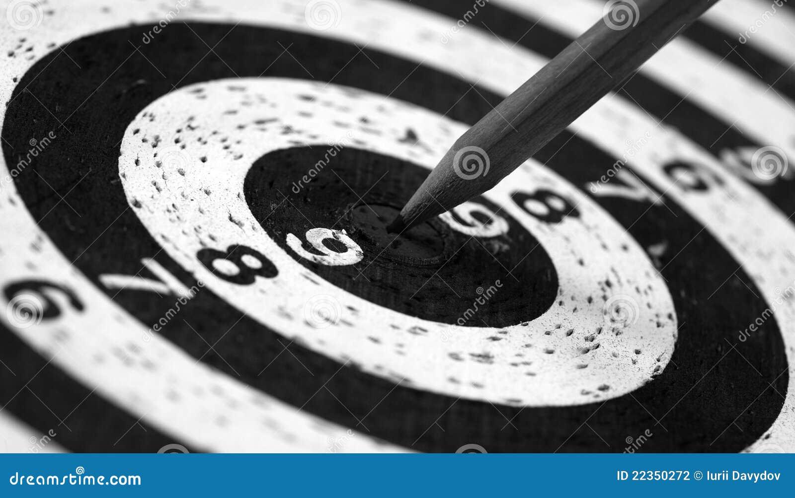 箭书写棍子目标