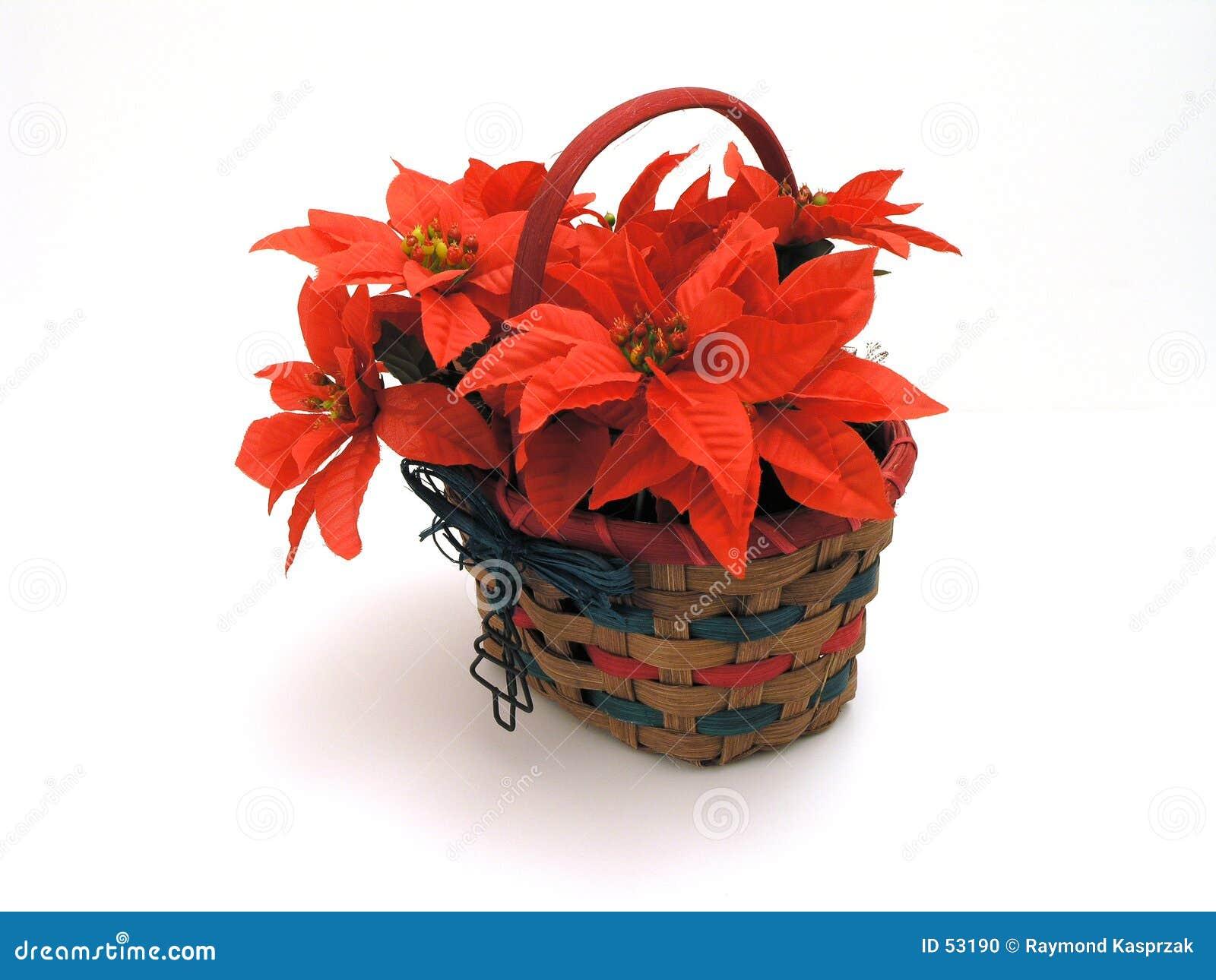 篮子圣诞节
