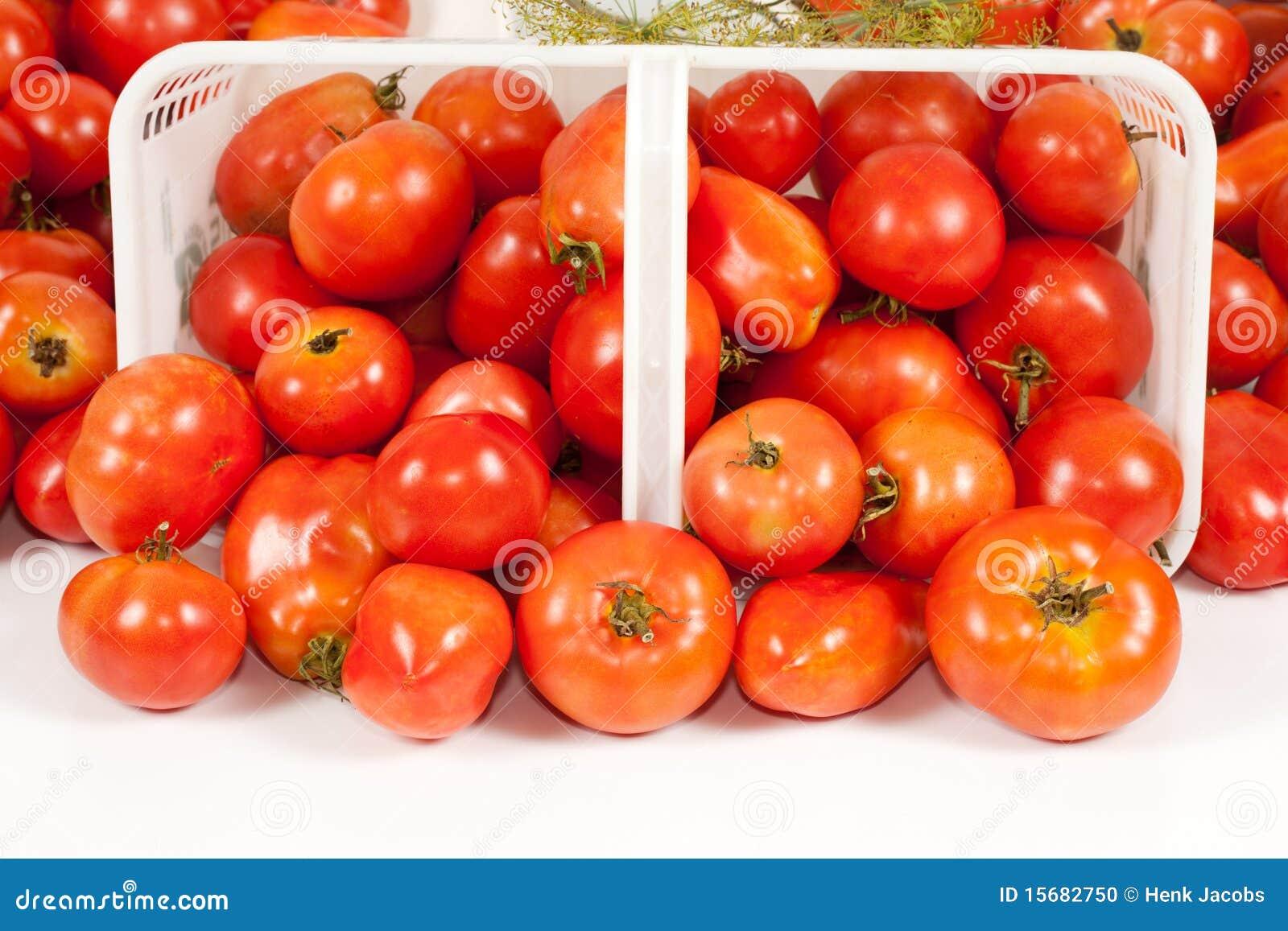 篮子接近的域前面蕃茄