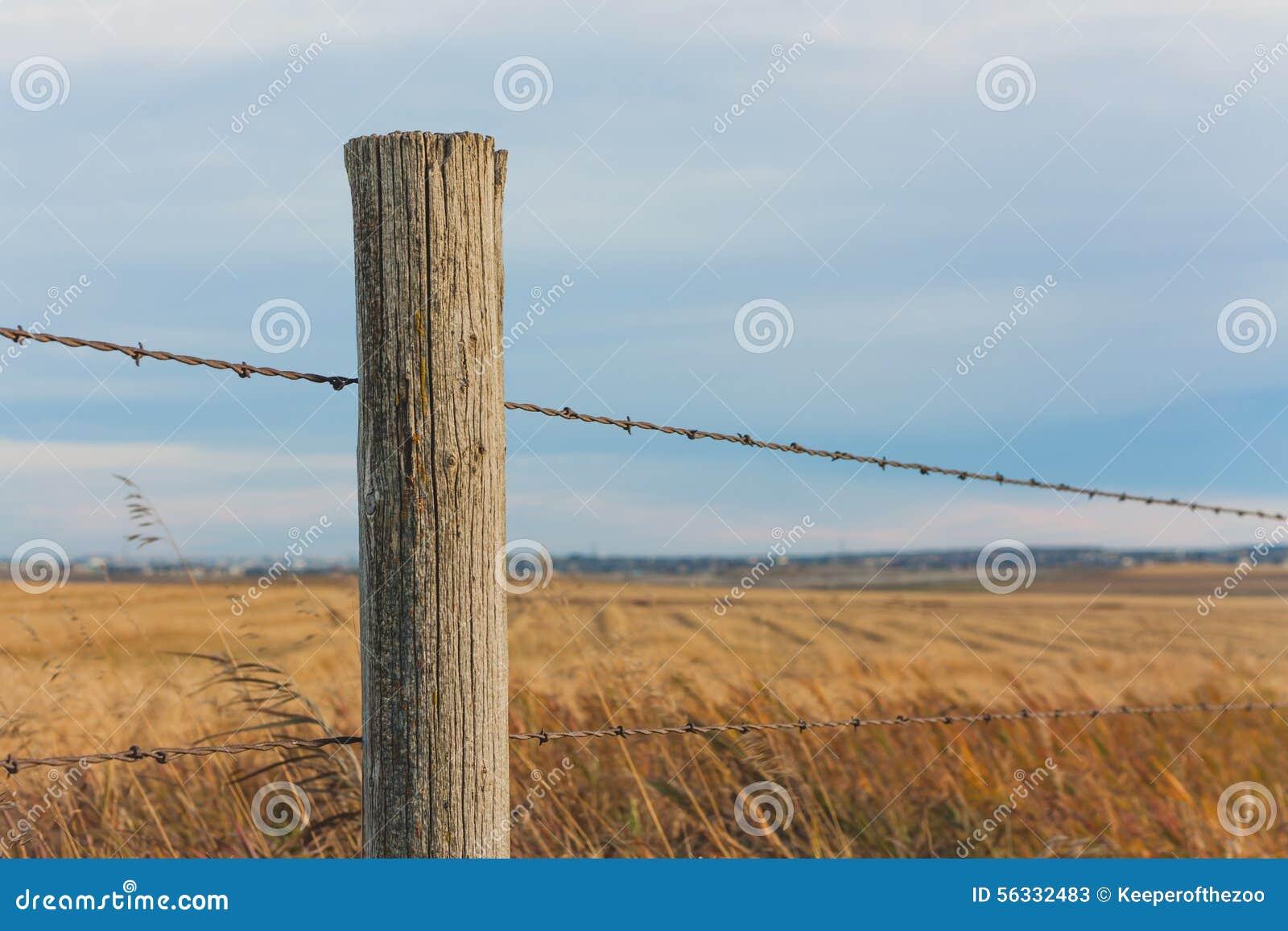 篱芭岗位在大草原
