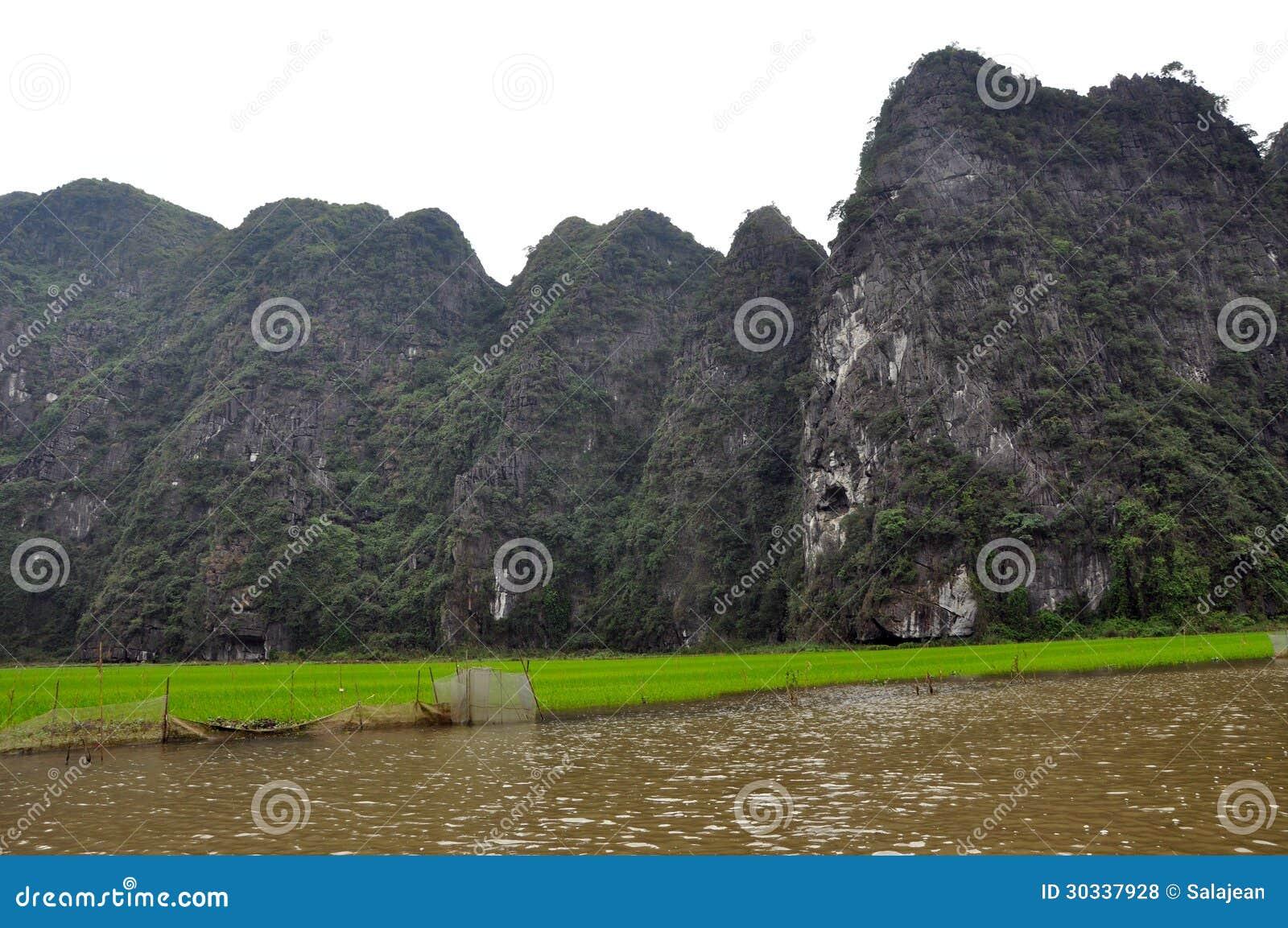 米领域和石灰石峭壁, Tam Coc,越南