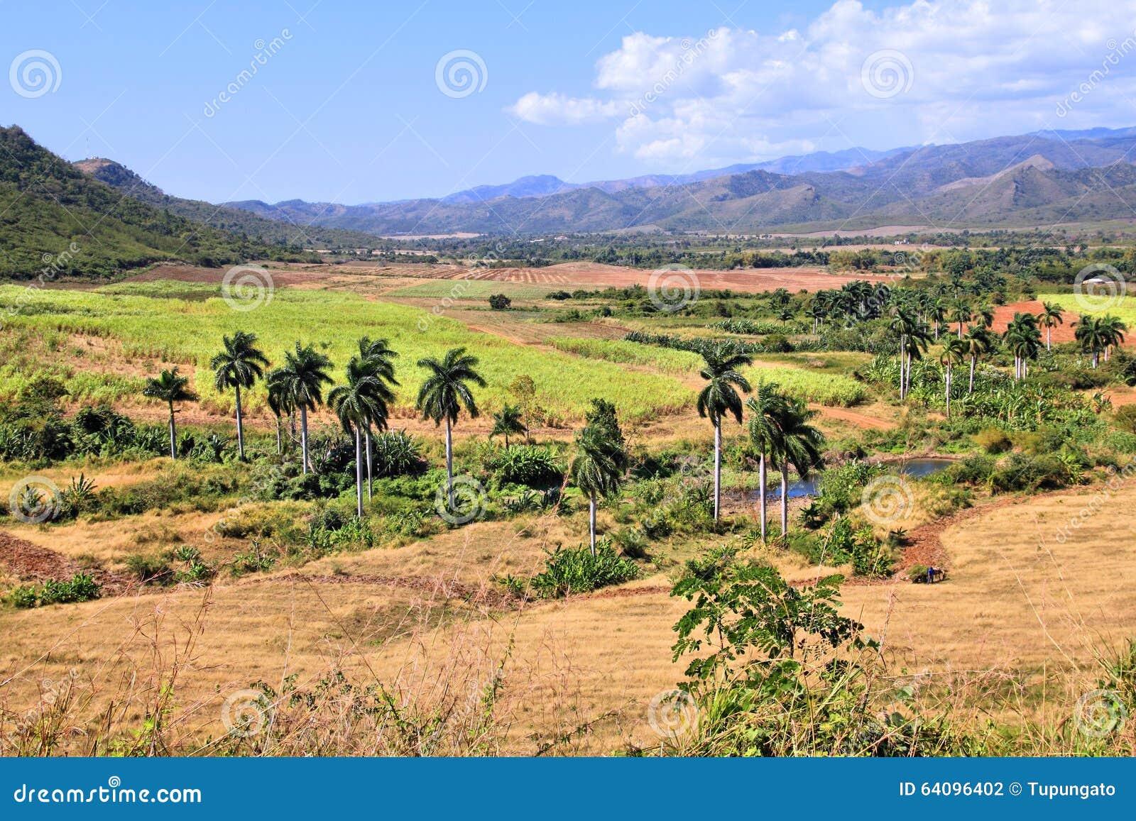 糖厂谷,古巴