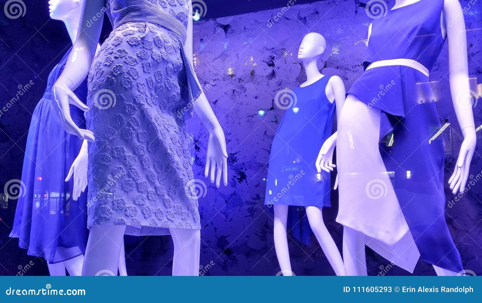 紫罗兰色商店窗口,时尚趋向, NYC, NY,美国